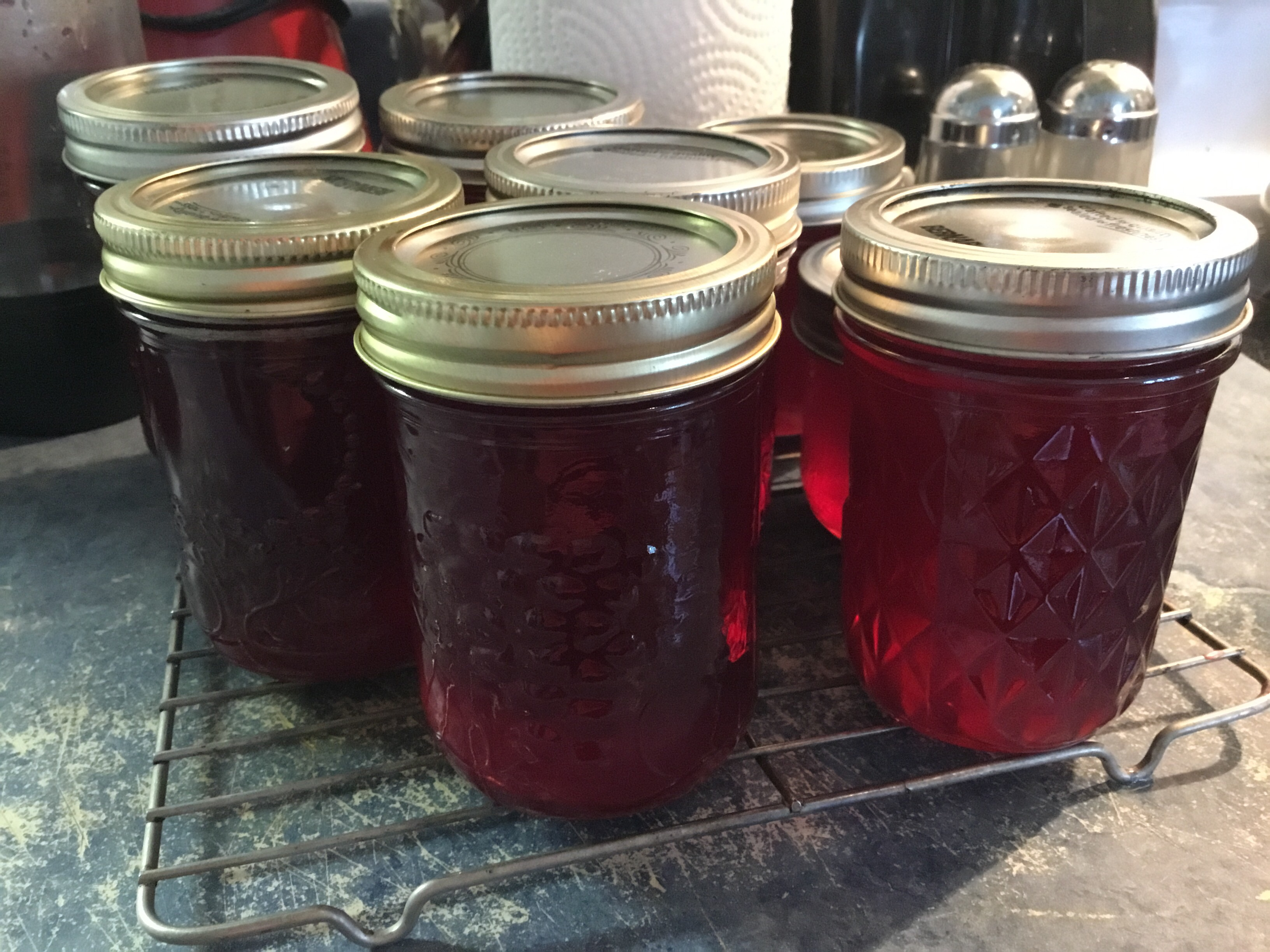 Concord Grape Jelly Faye Craig