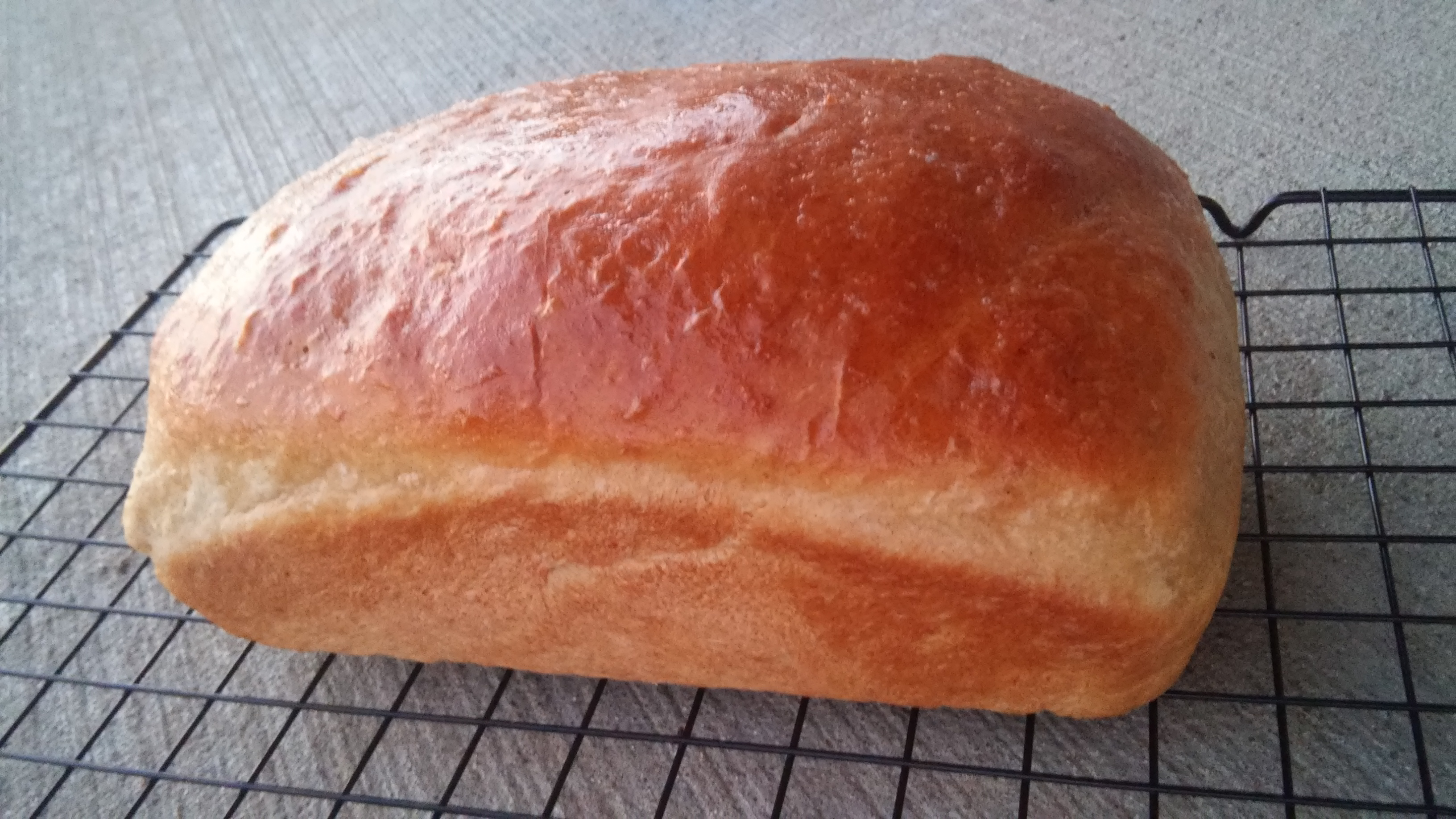Oatmeal Applesauce Bread Tammy Lynn