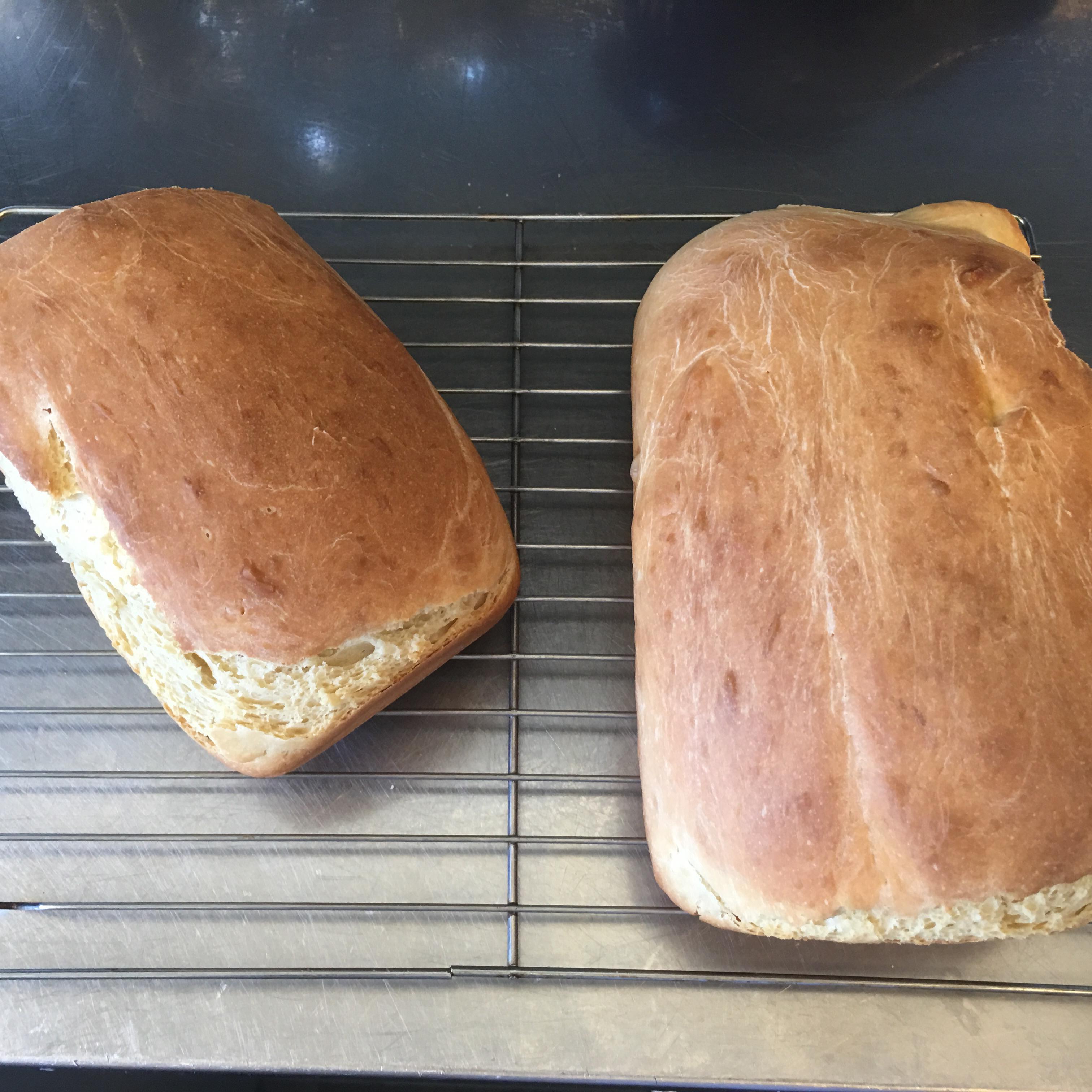 Breakfast Bread I-Leo