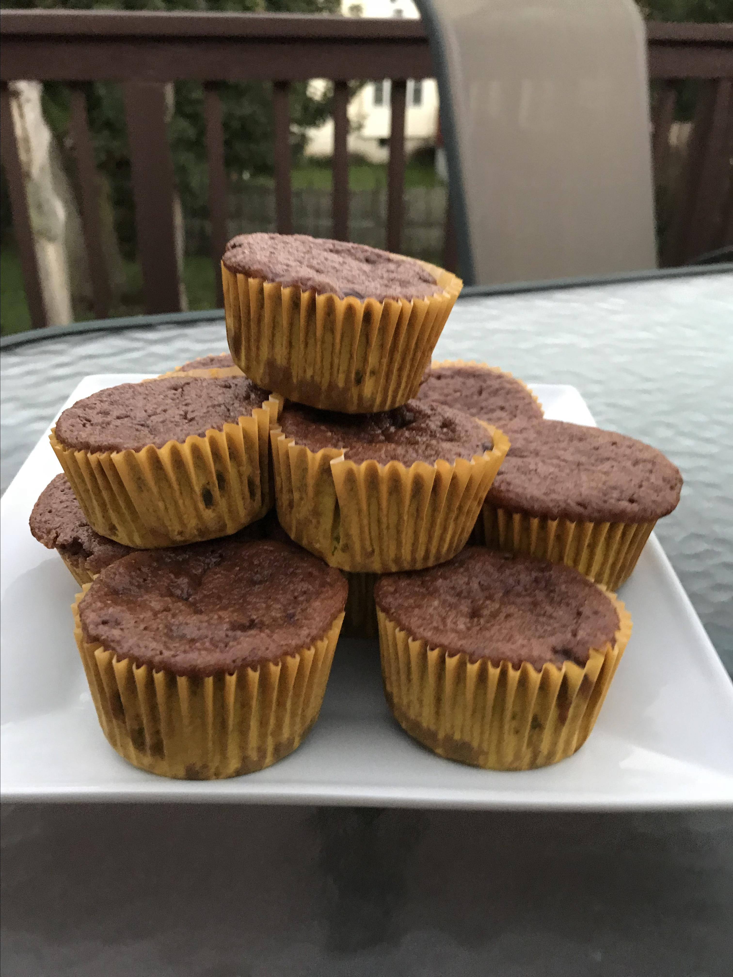 Chocolate Protein Muffins Jacolyn