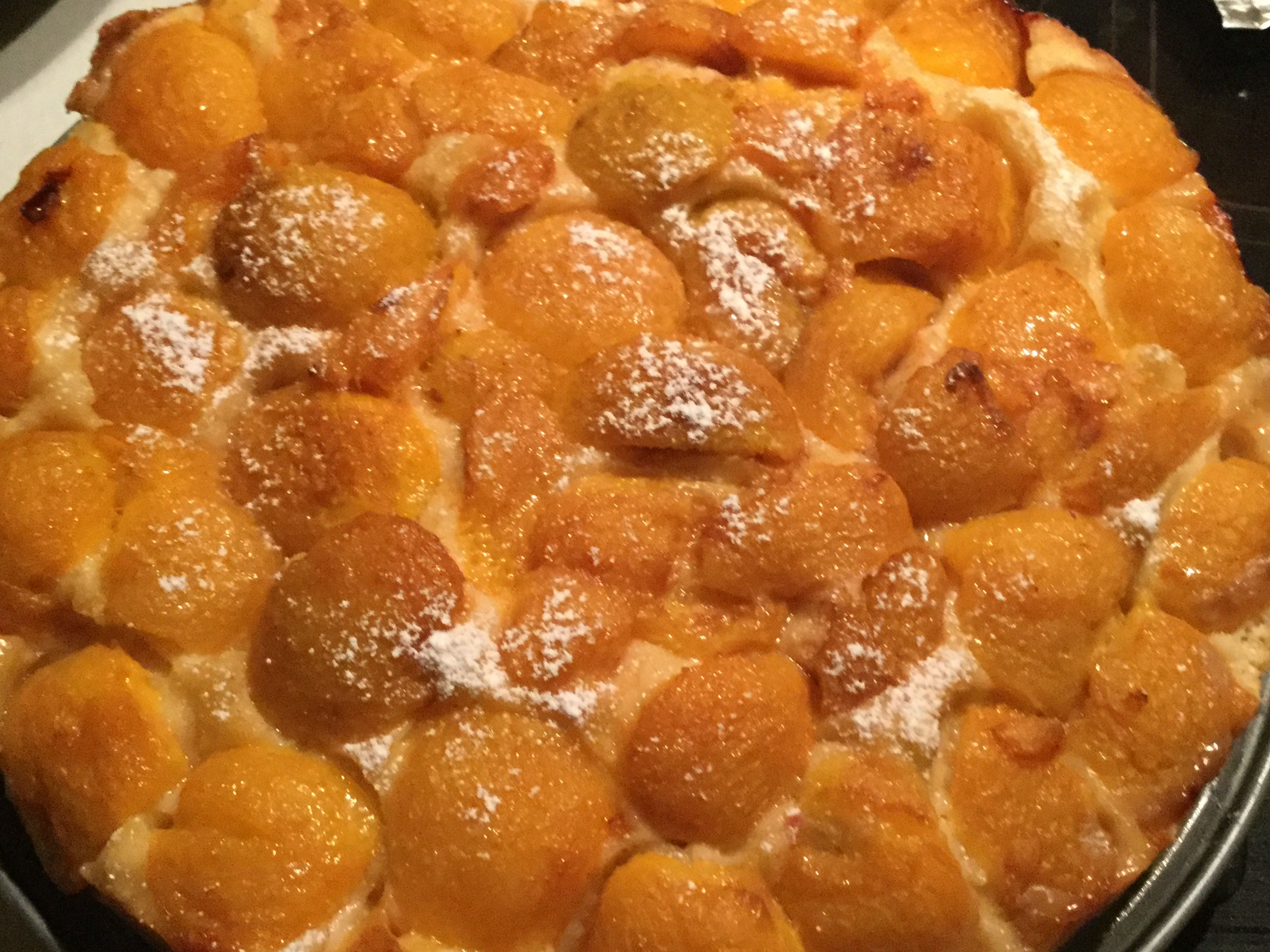 Plum Torte with Peeled Italian Plums Marianne