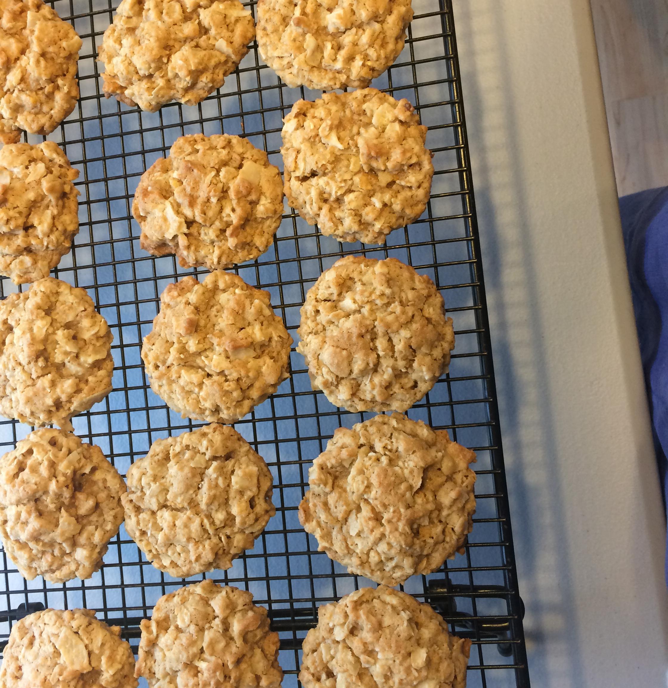 Chewy Crispy Coconut Cookies jbdsm