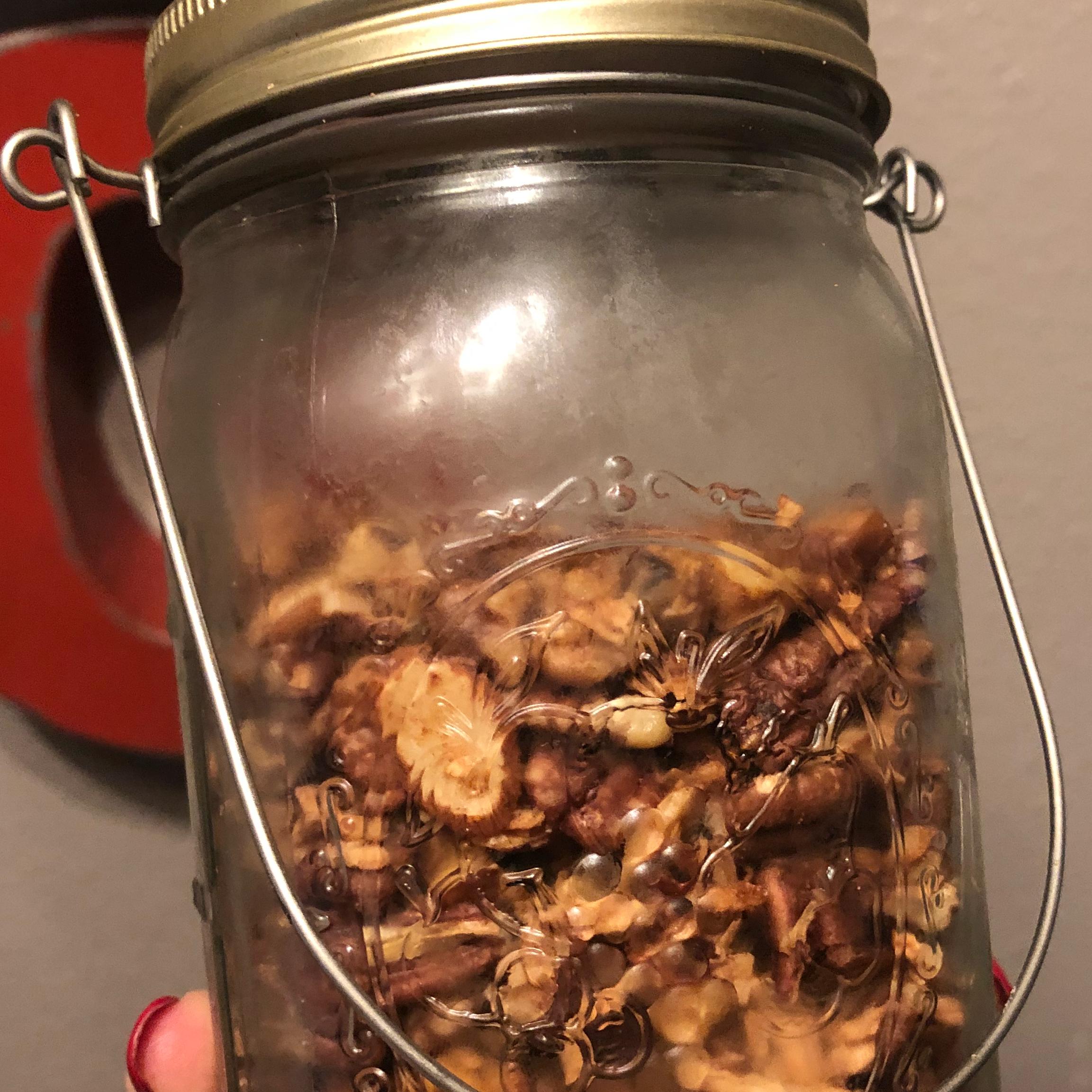 Keto Cinnamon Granola Darla Henson Grimm
