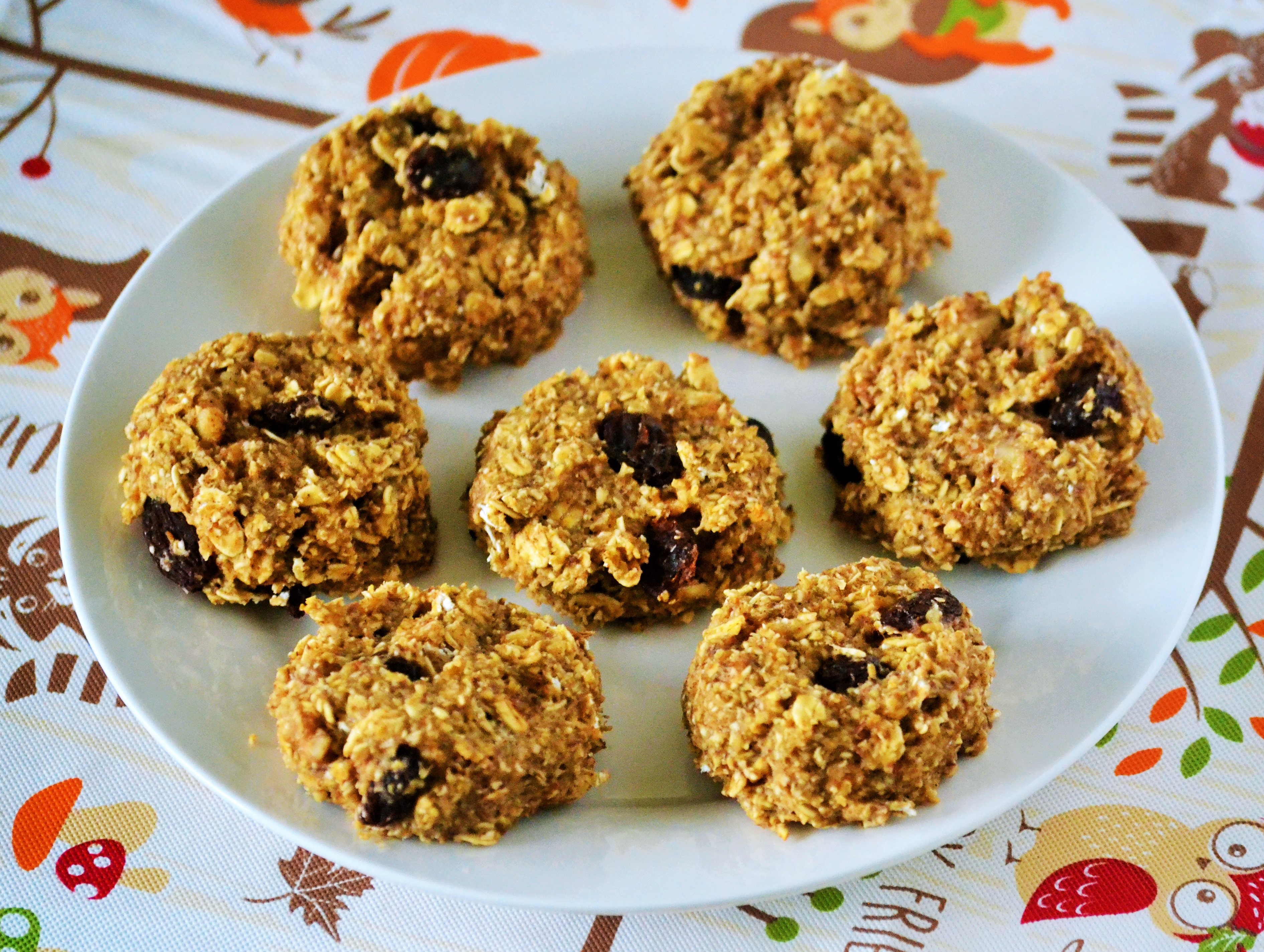 Oatmeal Breakfast Cookies DYEH