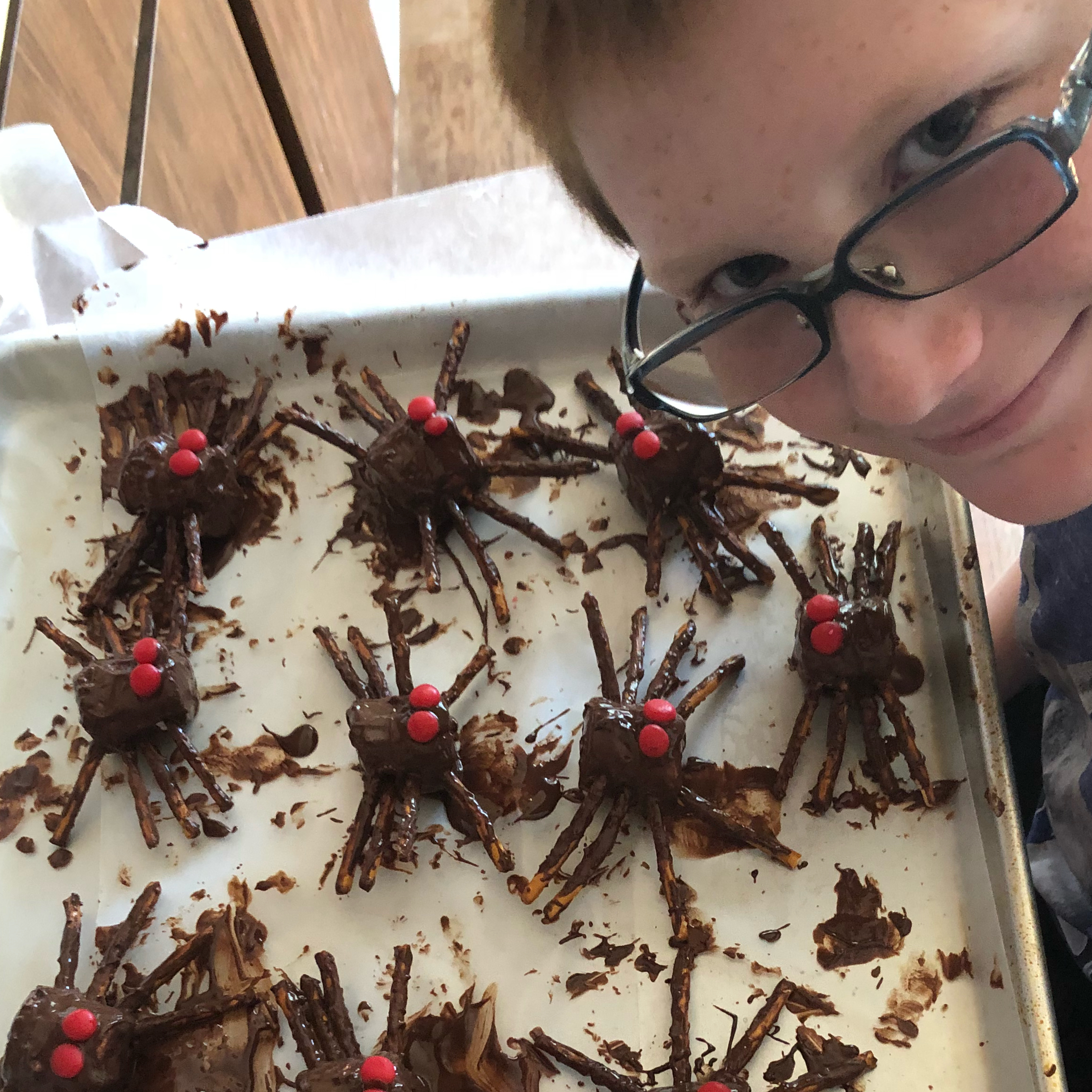 Edible Spiders TawnyLee