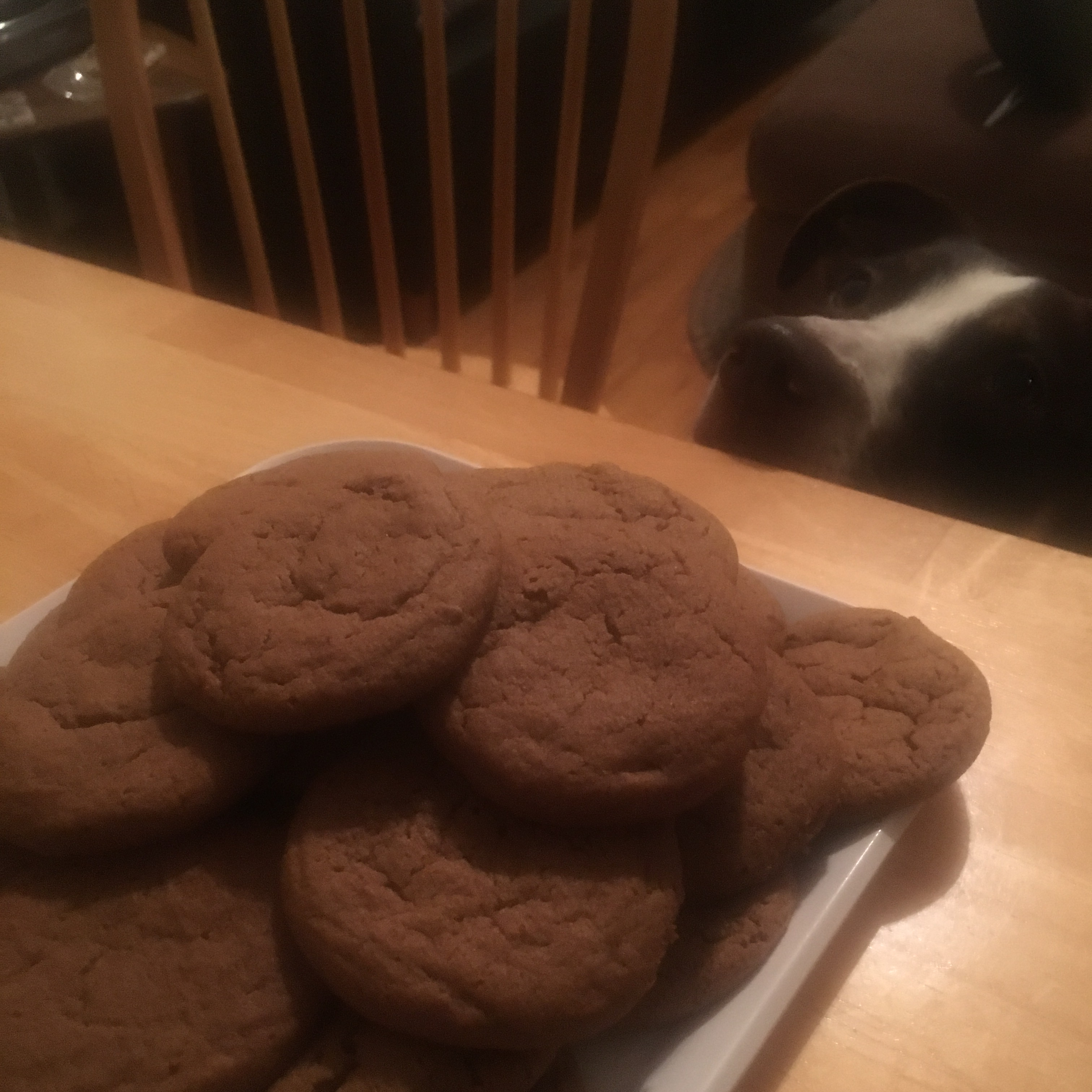 Chewy Ginger Cookies Jenna