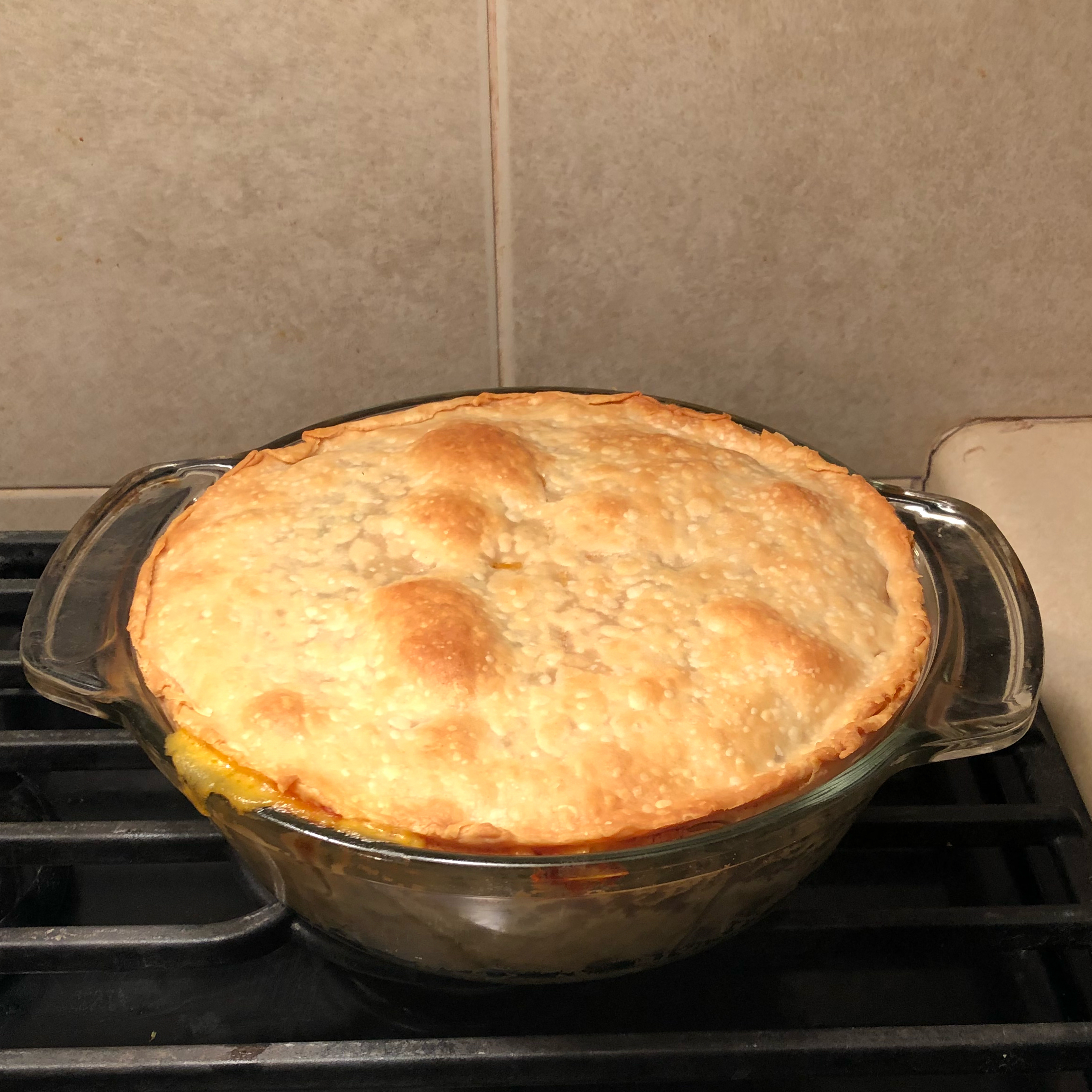 Chicken Pot Pie IV melissa