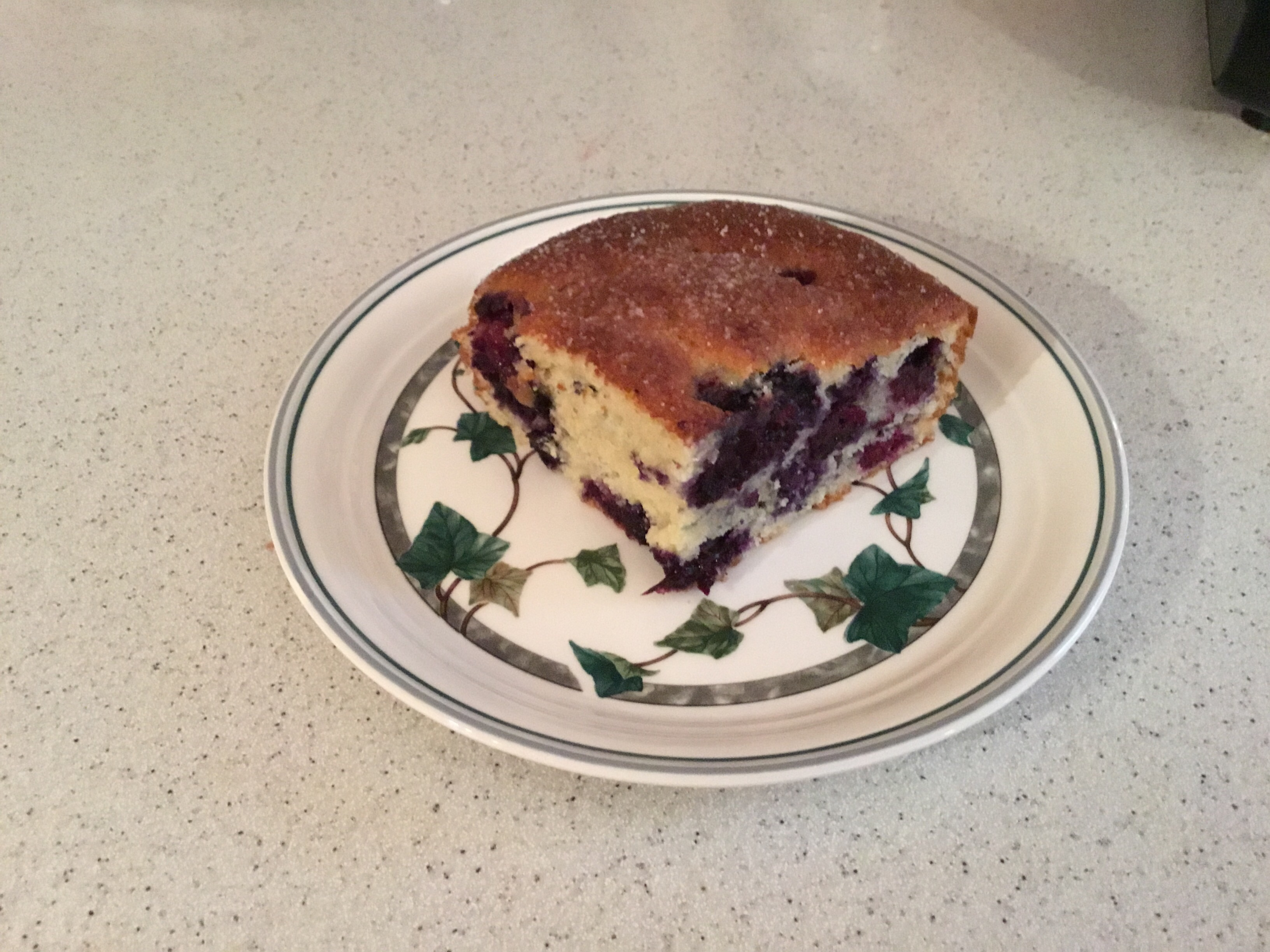 Alice's Easy Blueberry Cake