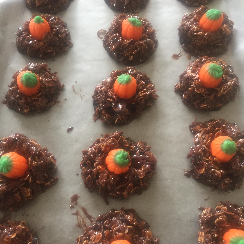 No-Bake Chocolate Coconut Cookies Liza
