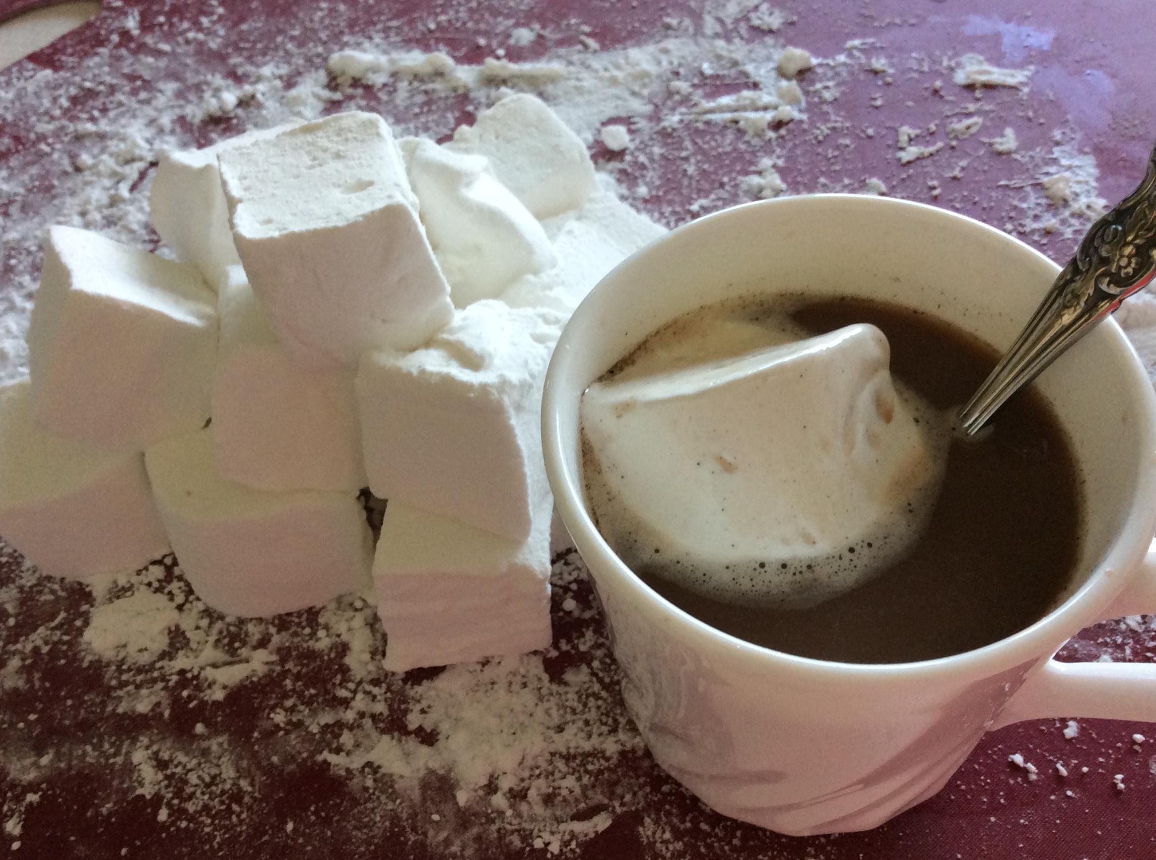 Hot Cocoa Mix Deb Bivin Dunham