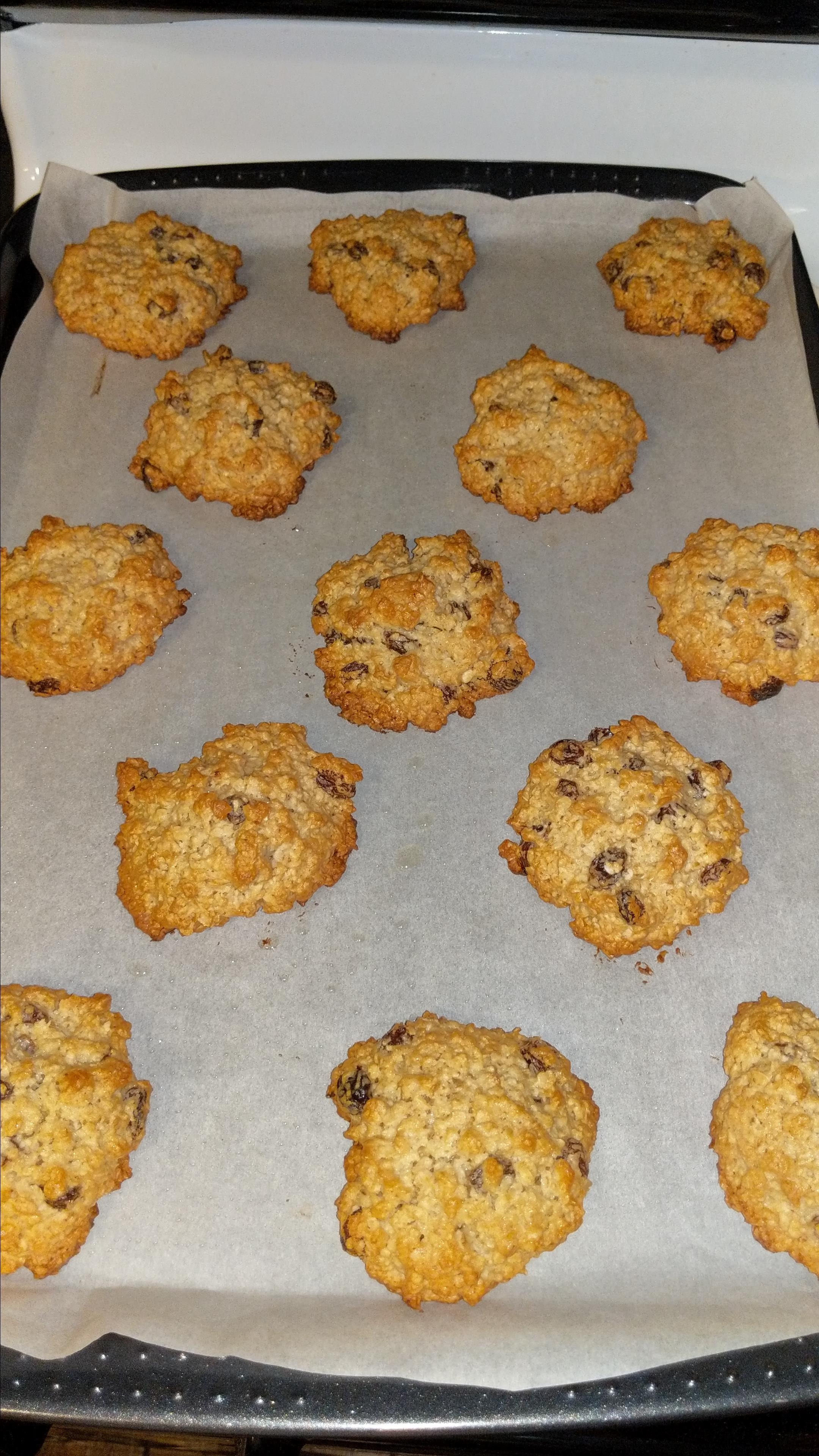 Oatmeal Raisin Cookies IX