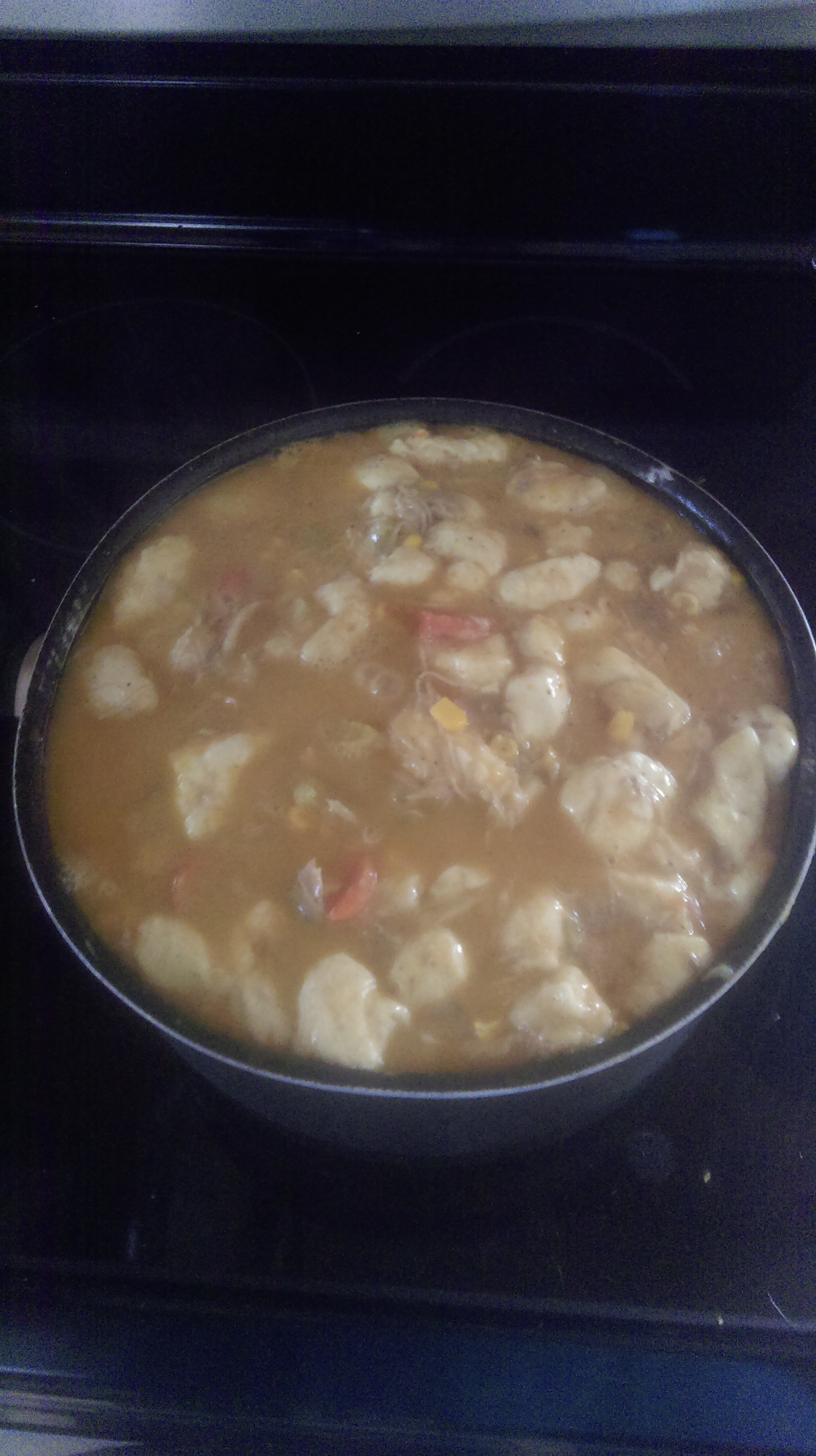 Chicken Thigh and Dumpling Stew