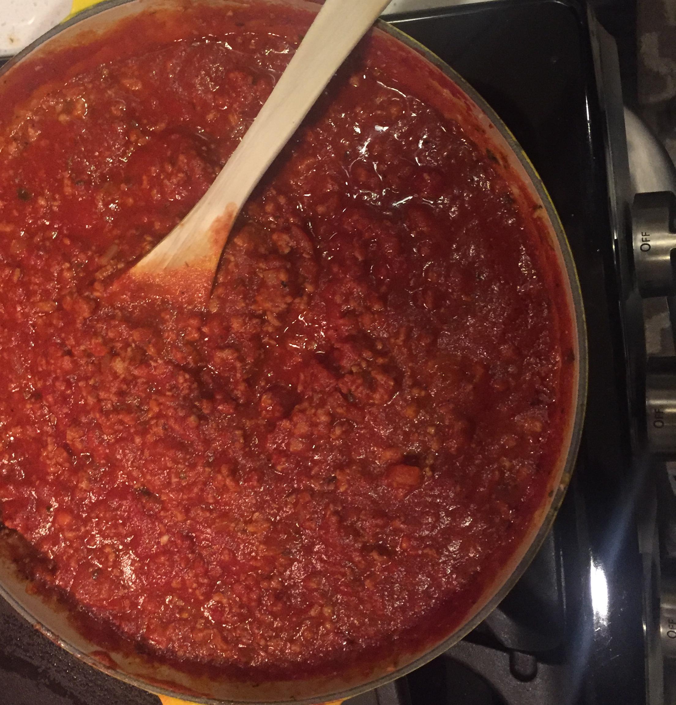 Amazing Ground Turkey Tomato Sauce