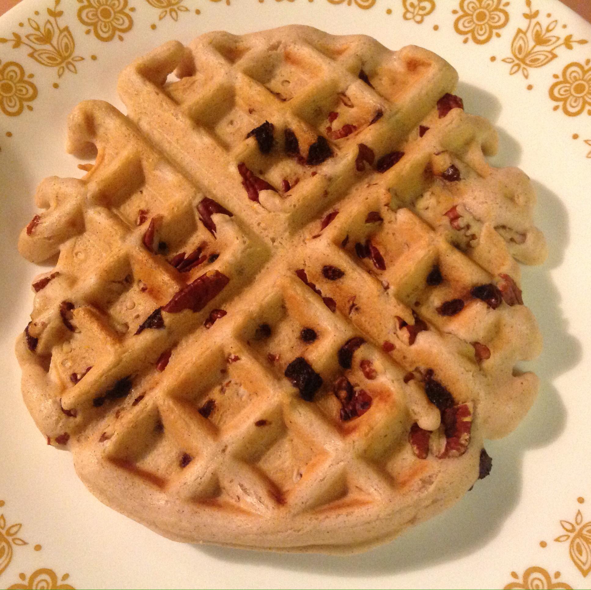 Vegan Cinnamon Waffles Alesa