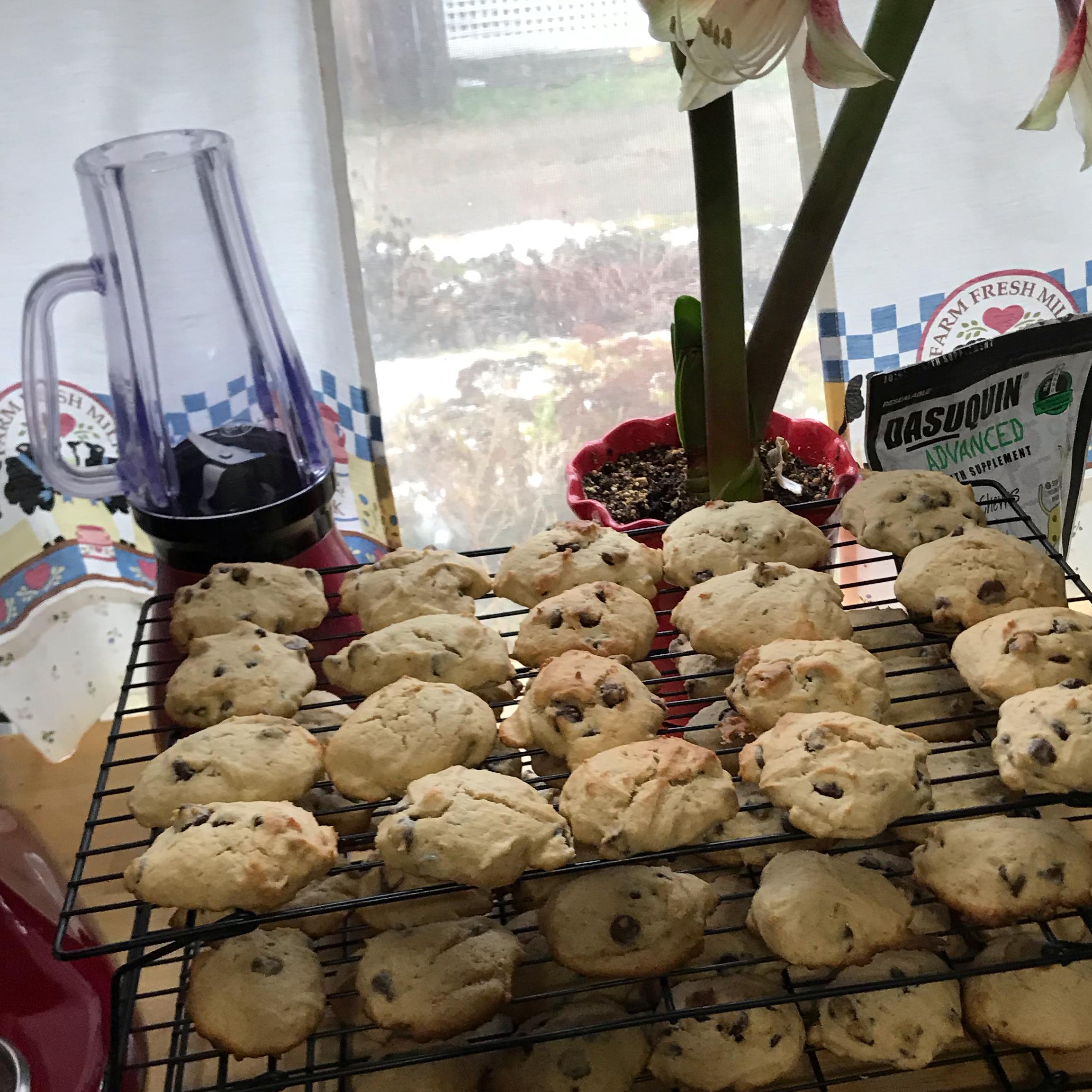 Chocolate Chip Banana Cookies tjbronk