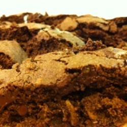 Chocolate Nut Biscotti StunnaShades
