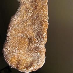 Thera's Canadian Fried Dough Sweets