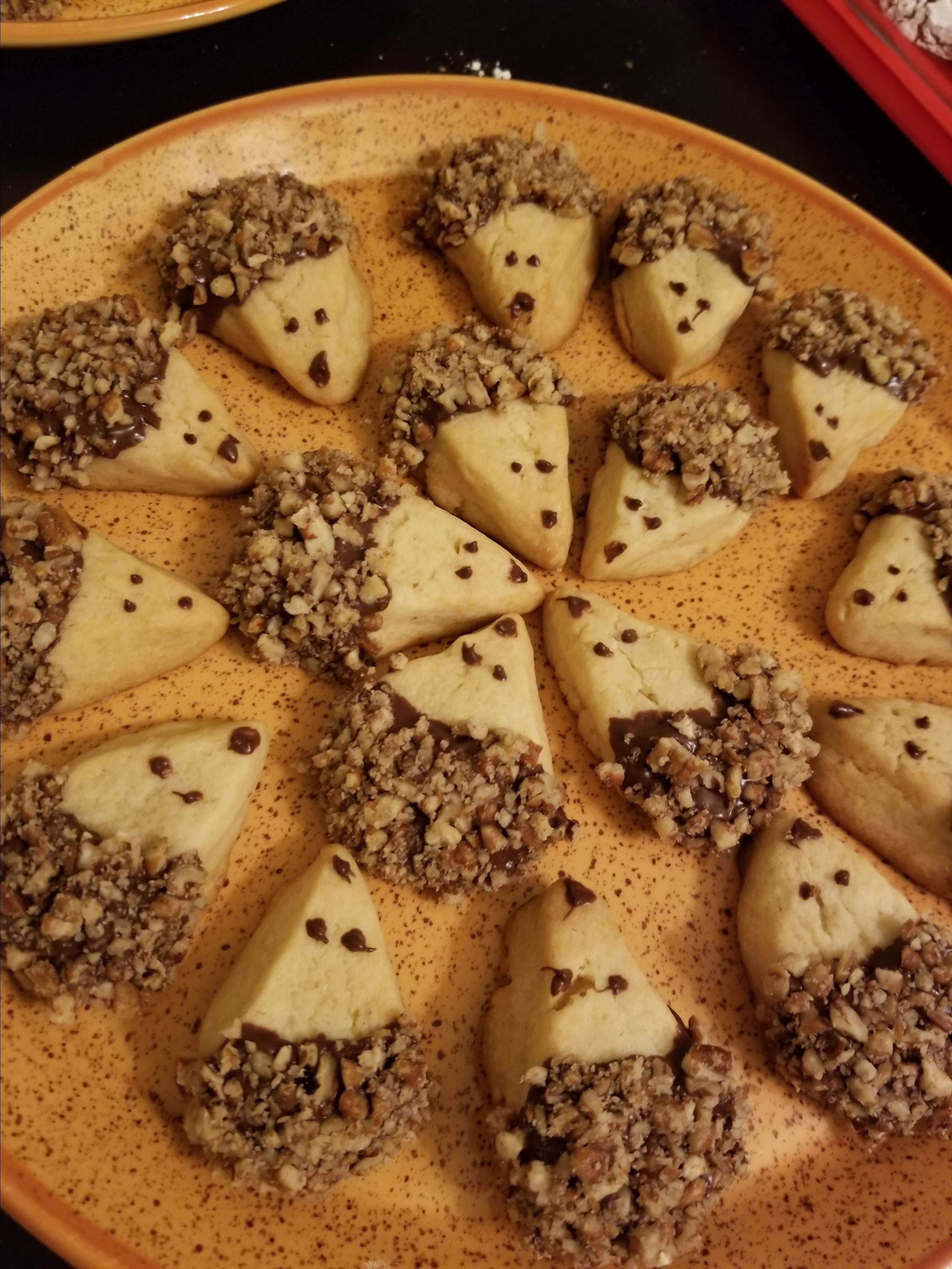 Hedgehog Cookies katiyuki