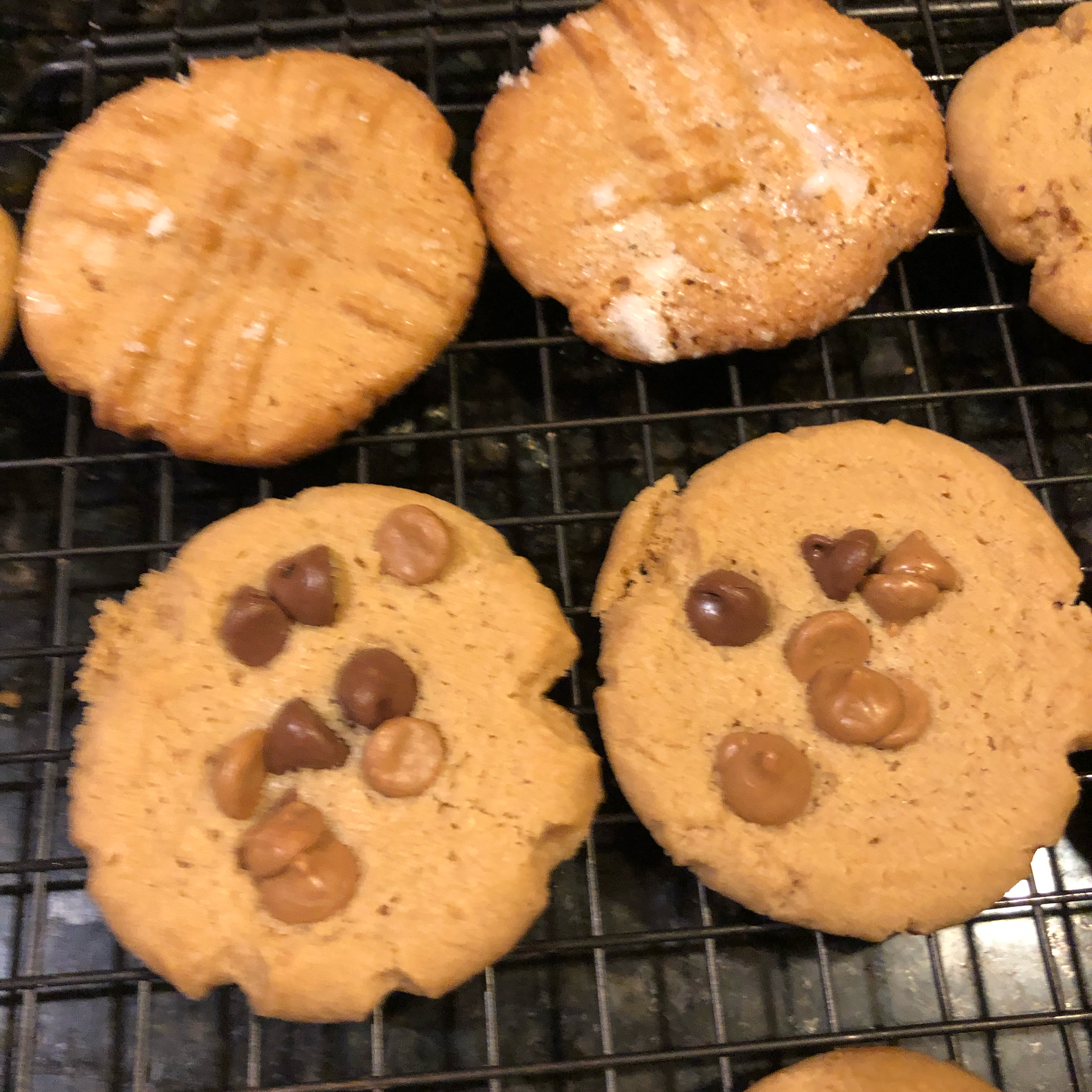 Yummy Peanut Butter Cookies Melody