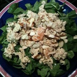 Orange Ginger Tuna Salad mlovelace79