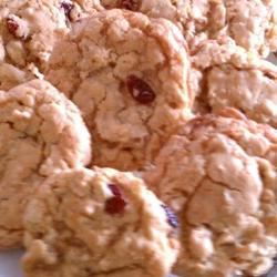Dishpan Cookies I ~Gina~