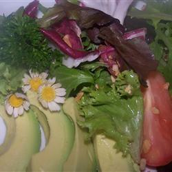 Fresh as a Daisy Spring Salad GAMMA KATSY