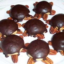 Snappy Turtle Cookies SUZZANNA