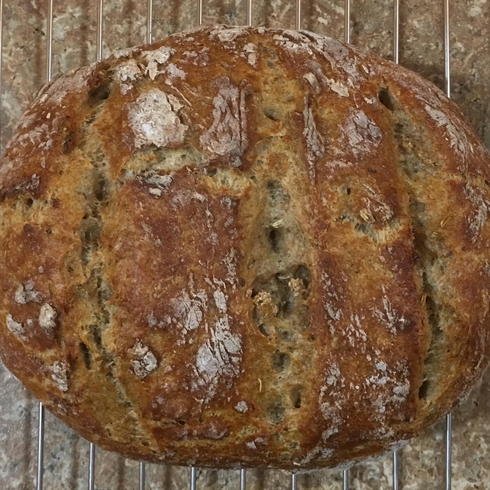 Dutch Oven Caraway Rye Bread