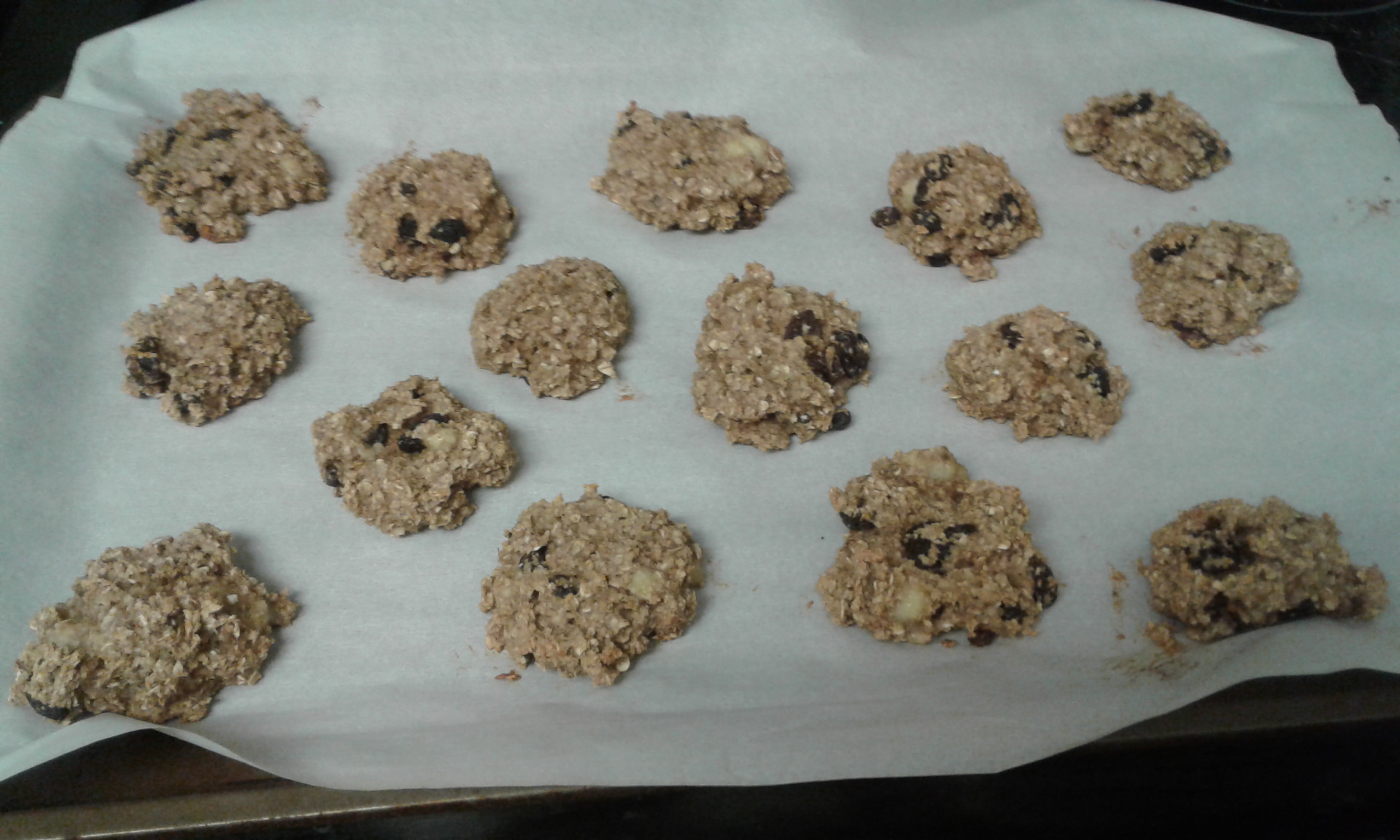 Oatmeal Breakfast Cookies Angela Shirley Nordman