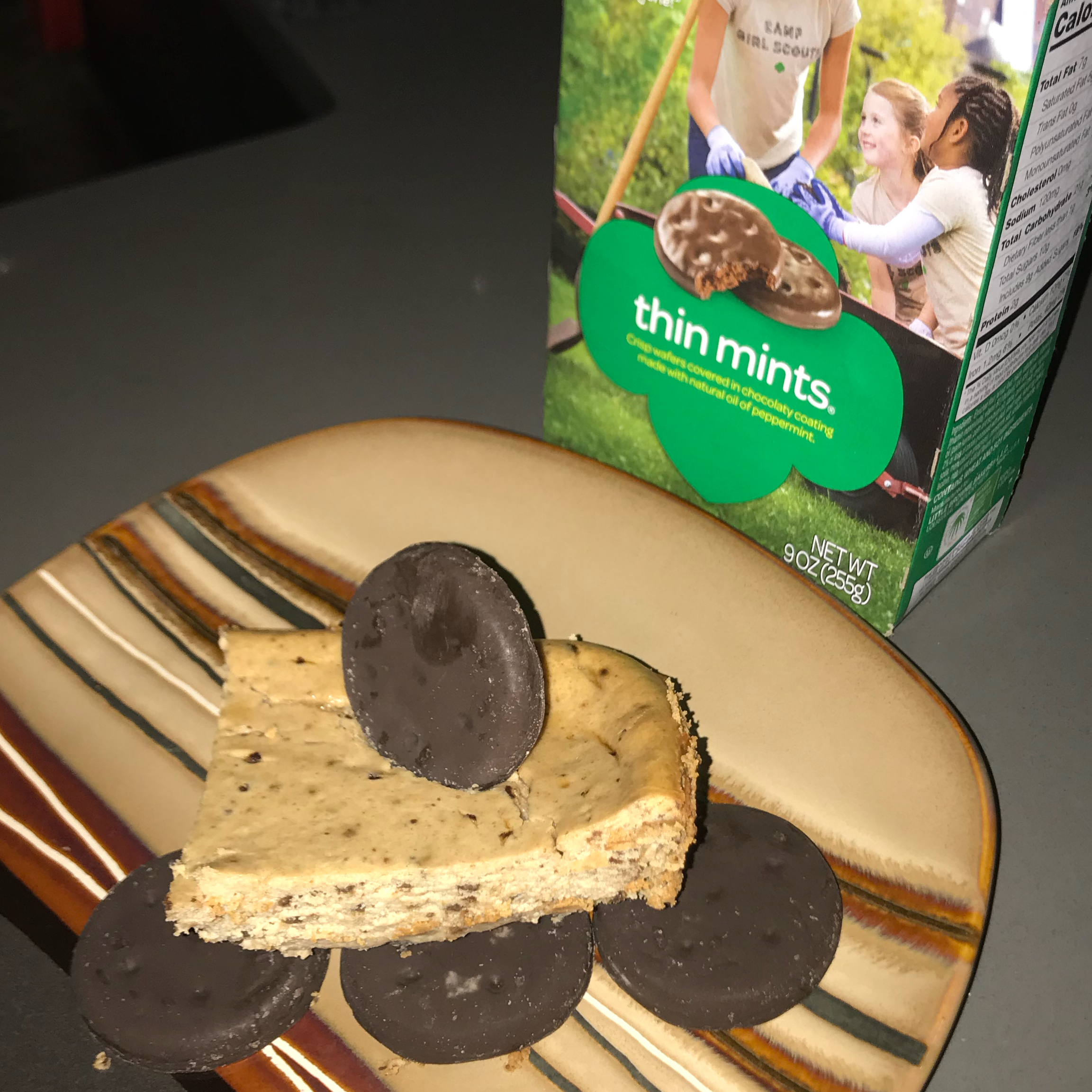 Girl Scout Thin Mints® Cheesecake Shel24601