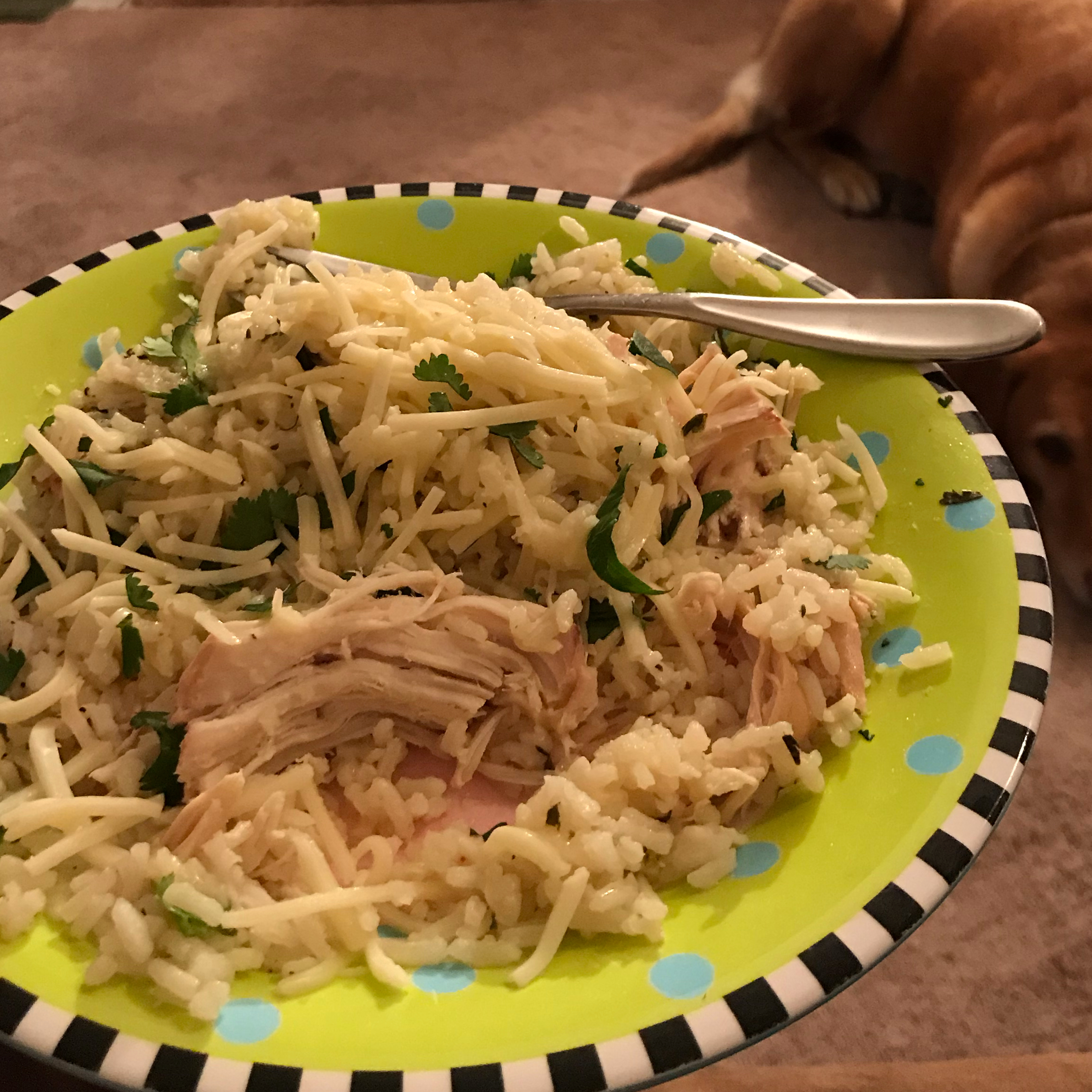 Slow Cooker Lime Chicken with Rice ejrourke