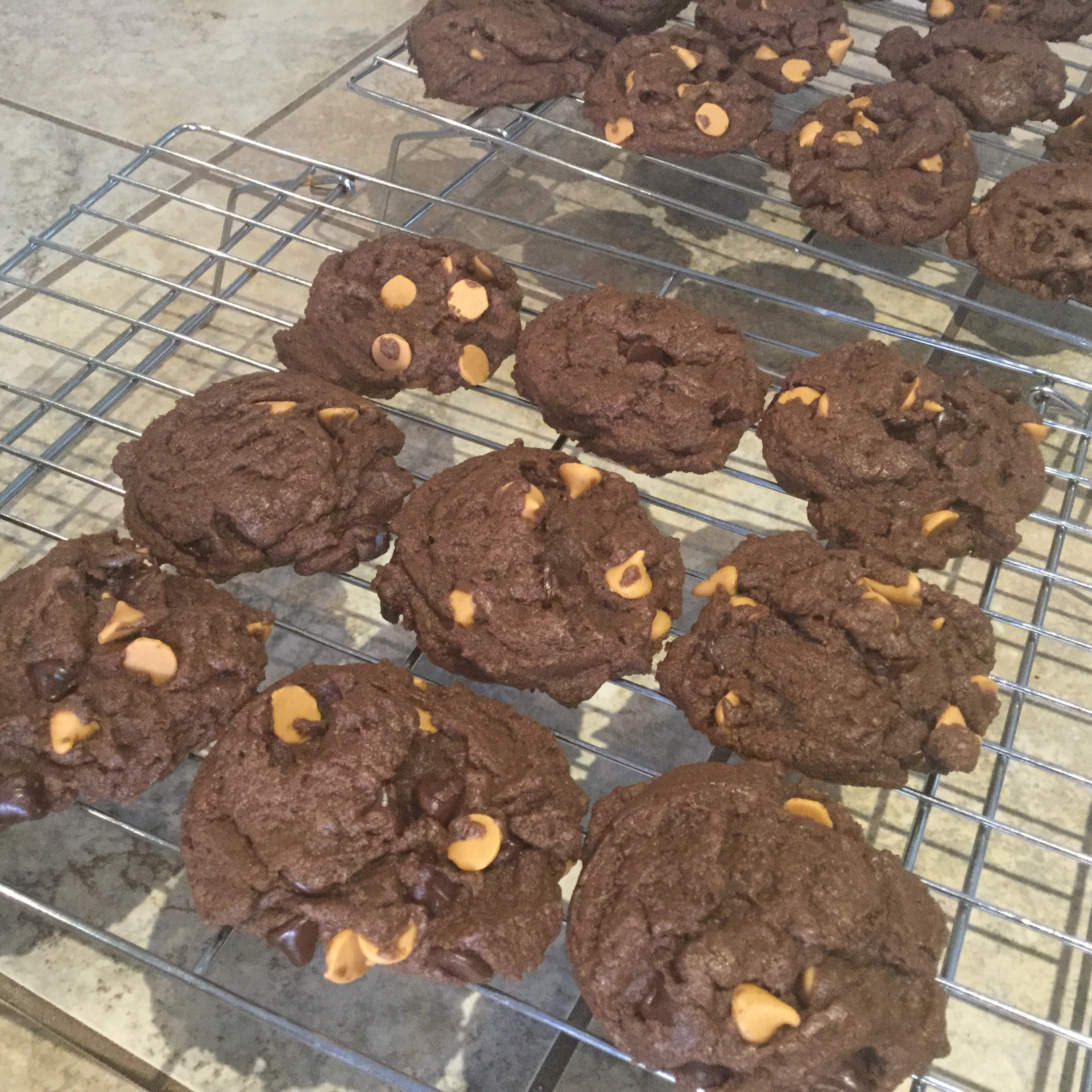 Great Chocolate Chocolate Chip Cookies jcbomber