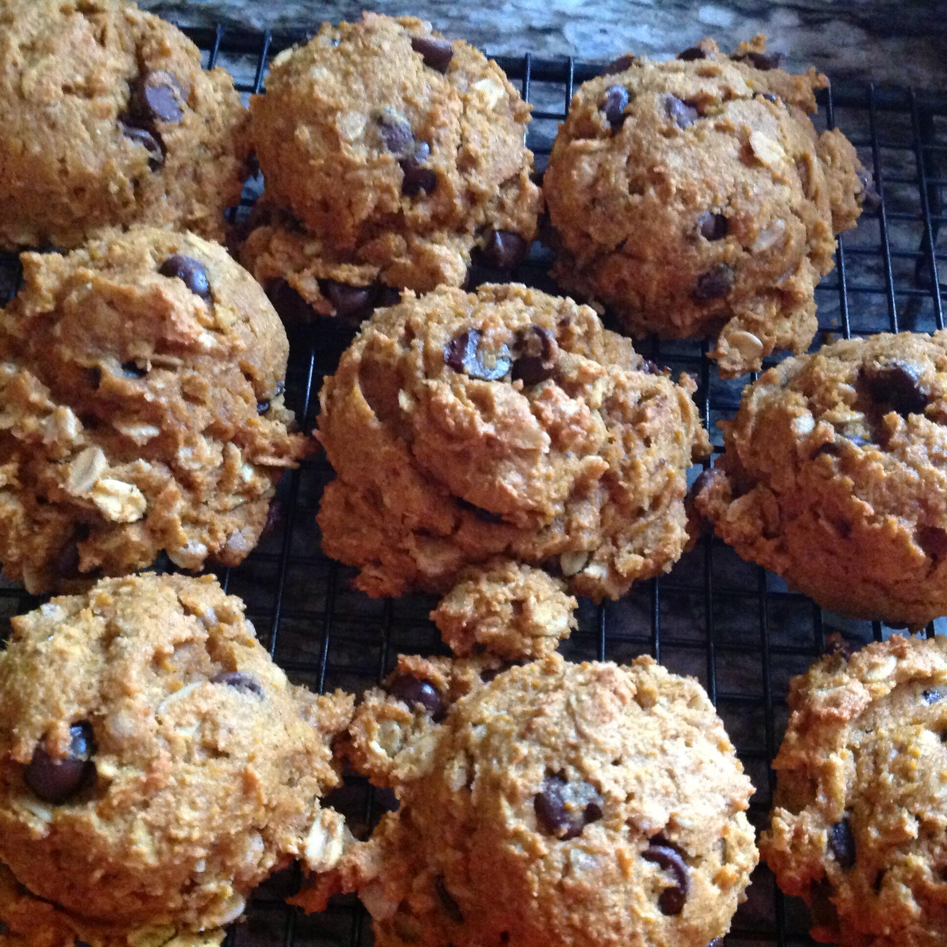 Healthy Vegan Pumpkin Oat Chocolate Chip Cookies