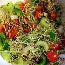 Tom's Crunchy Salad MBKRH