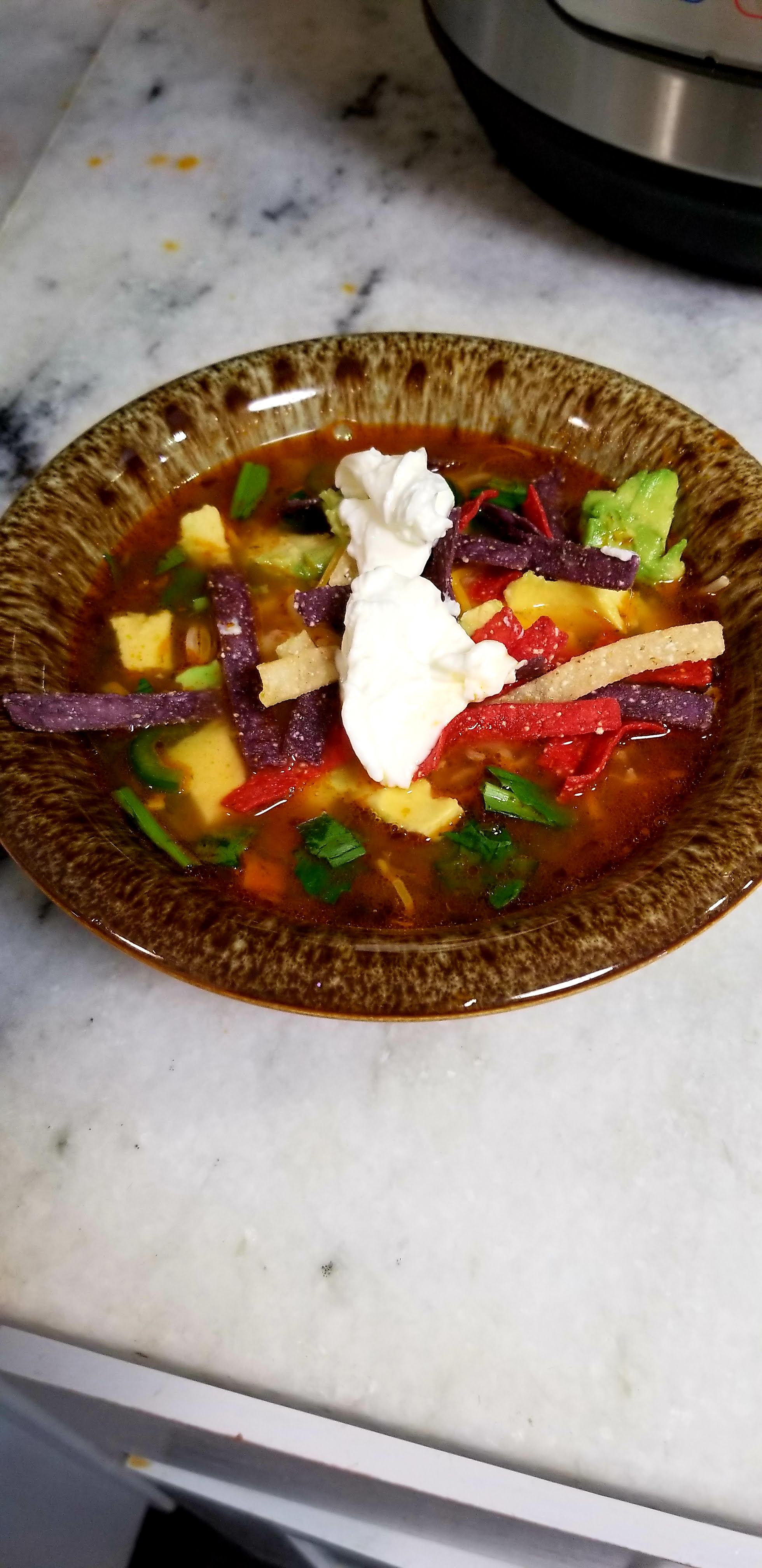 Instant Pot® Mexican Chicken Soup richgator