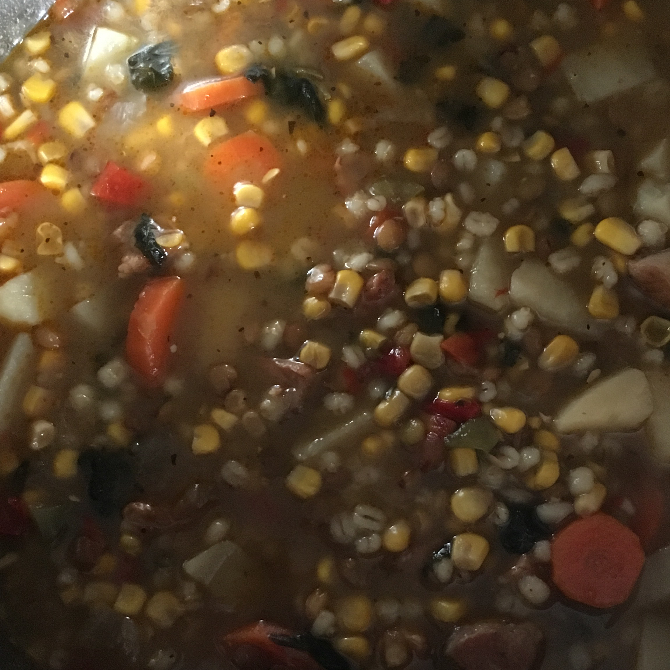Lentil Barley Stew Susan Patrick Welch