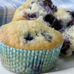 Low-Cholesterol Blueberry Muffins II