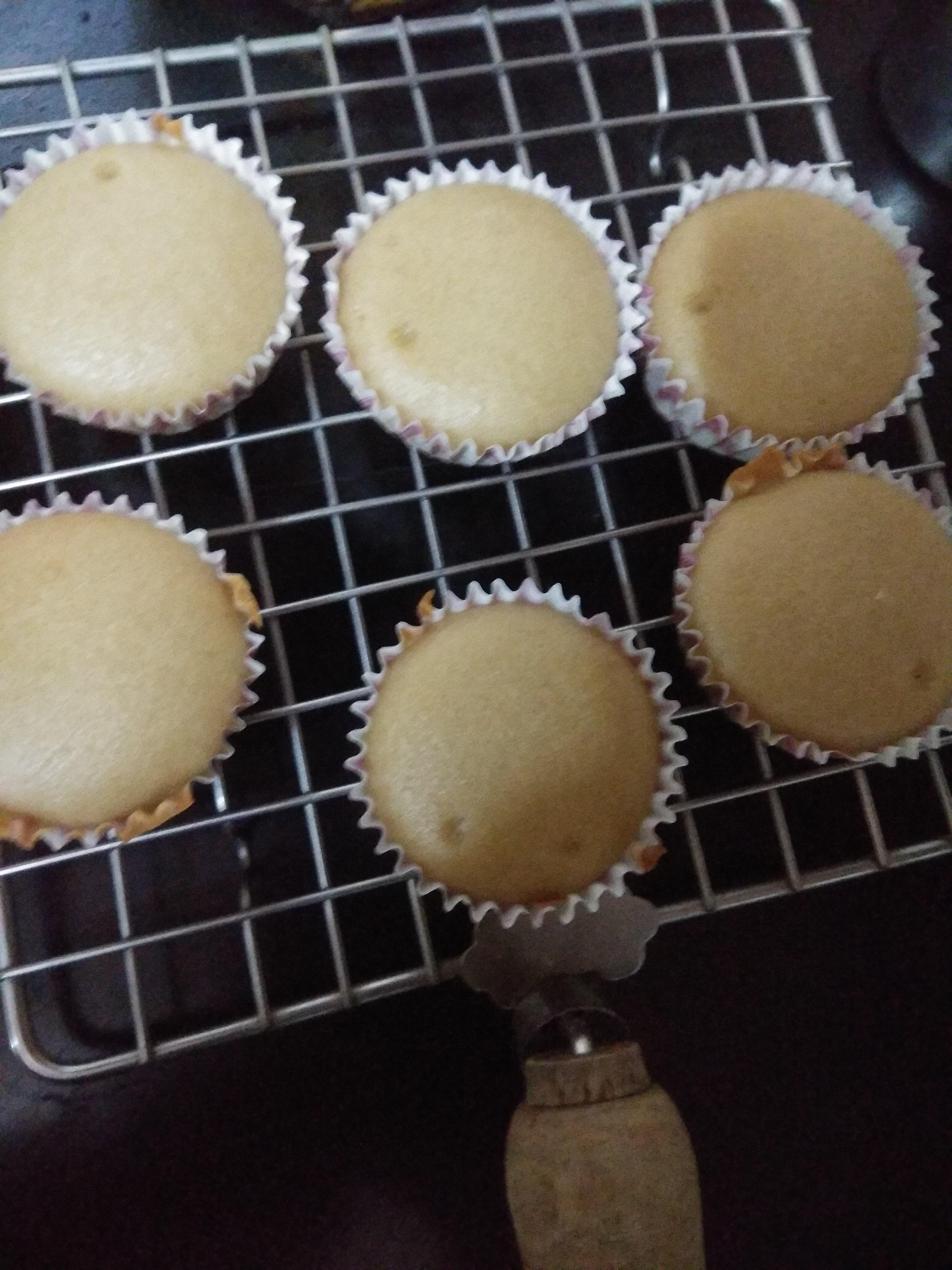 Vegan Basic Vanilla Cake