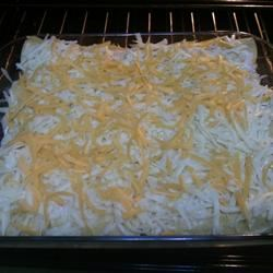 Vegetarian Spinach and Mushroom Enchiladas Randy Tolleson