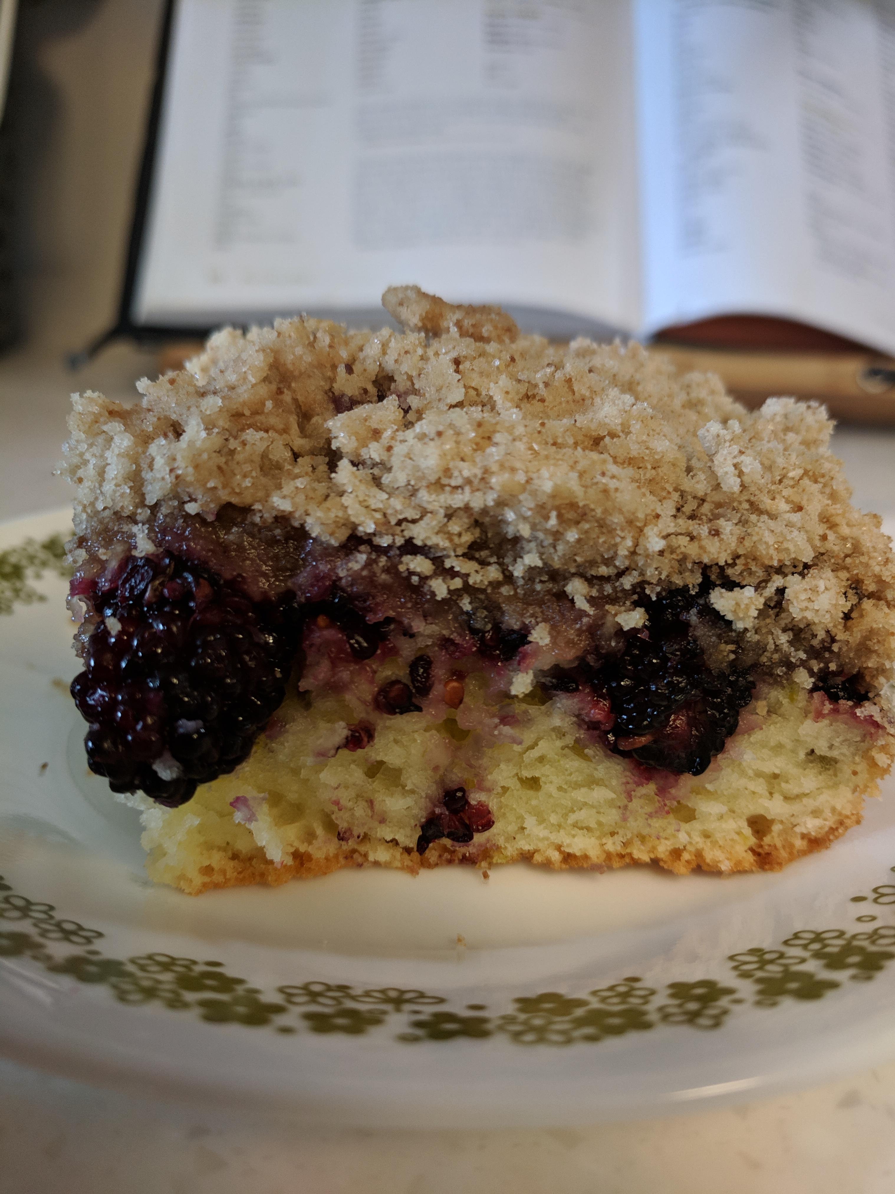 Mulberry Kuchen (Cake) javyjones