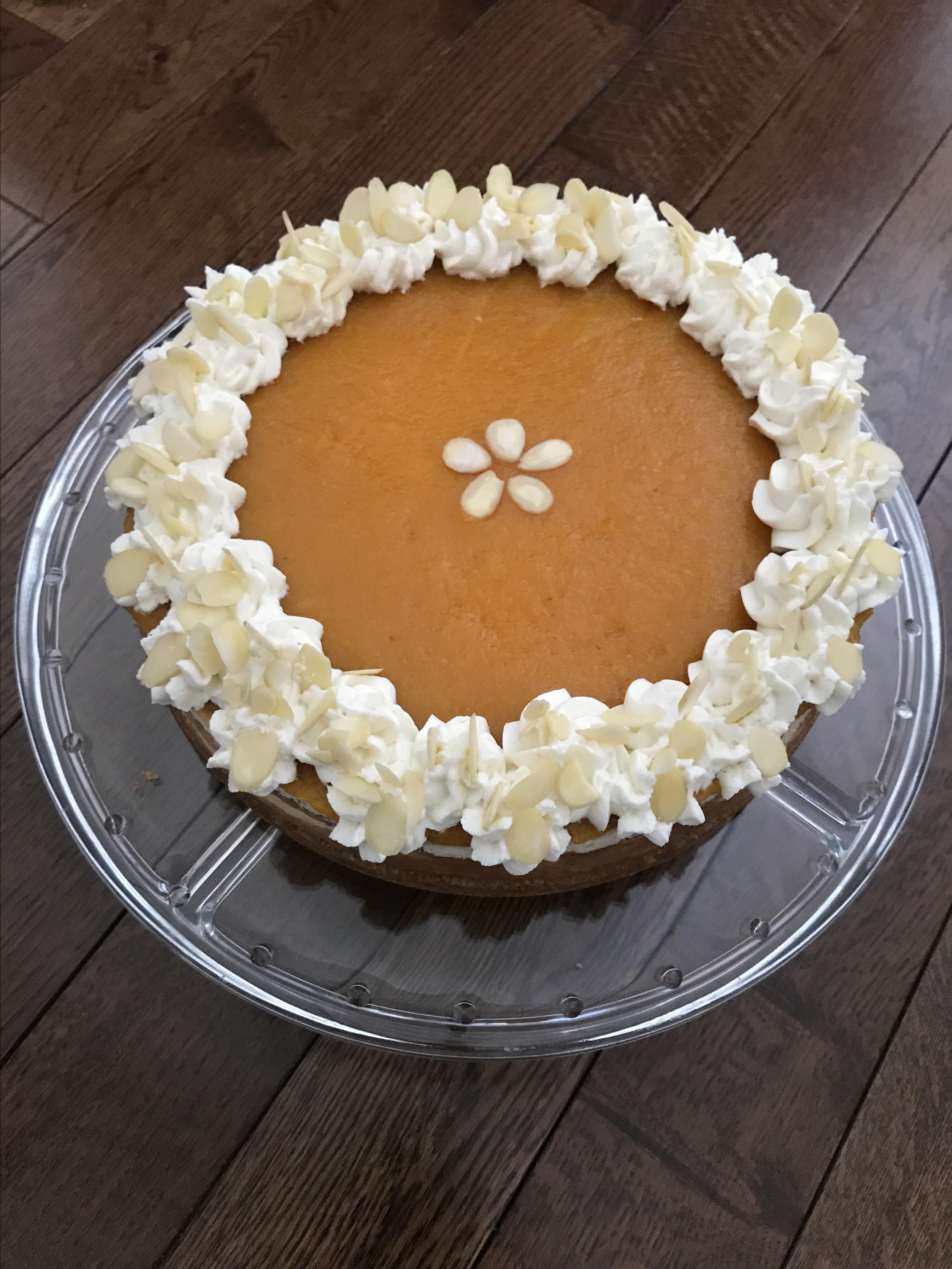 Apricot Cheesecake Megan Schroder
