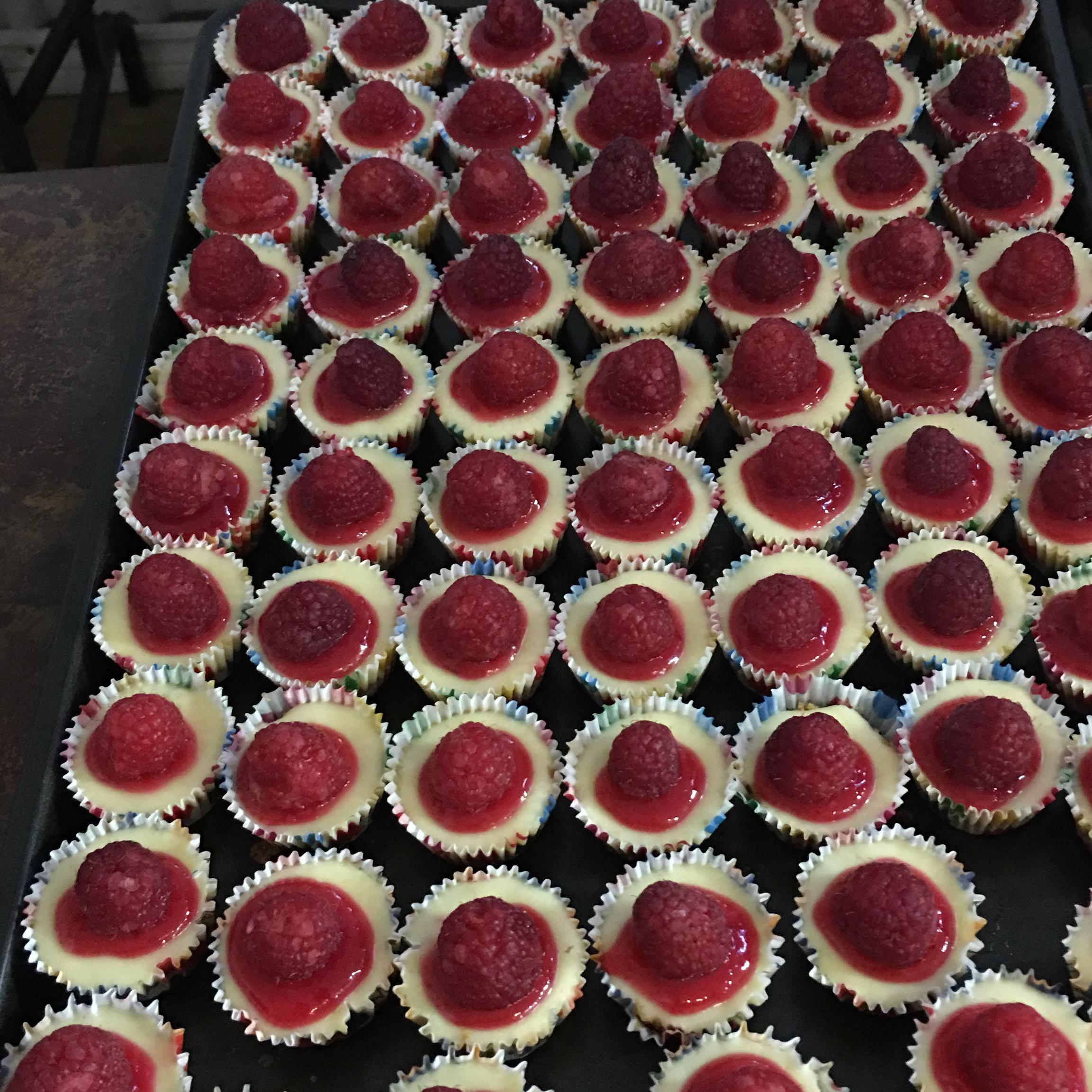 Mini Cheesecakes with Vanilla Wafers atlchef