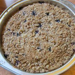 Blueberry Oatmeal Coffee Cake CatLauren