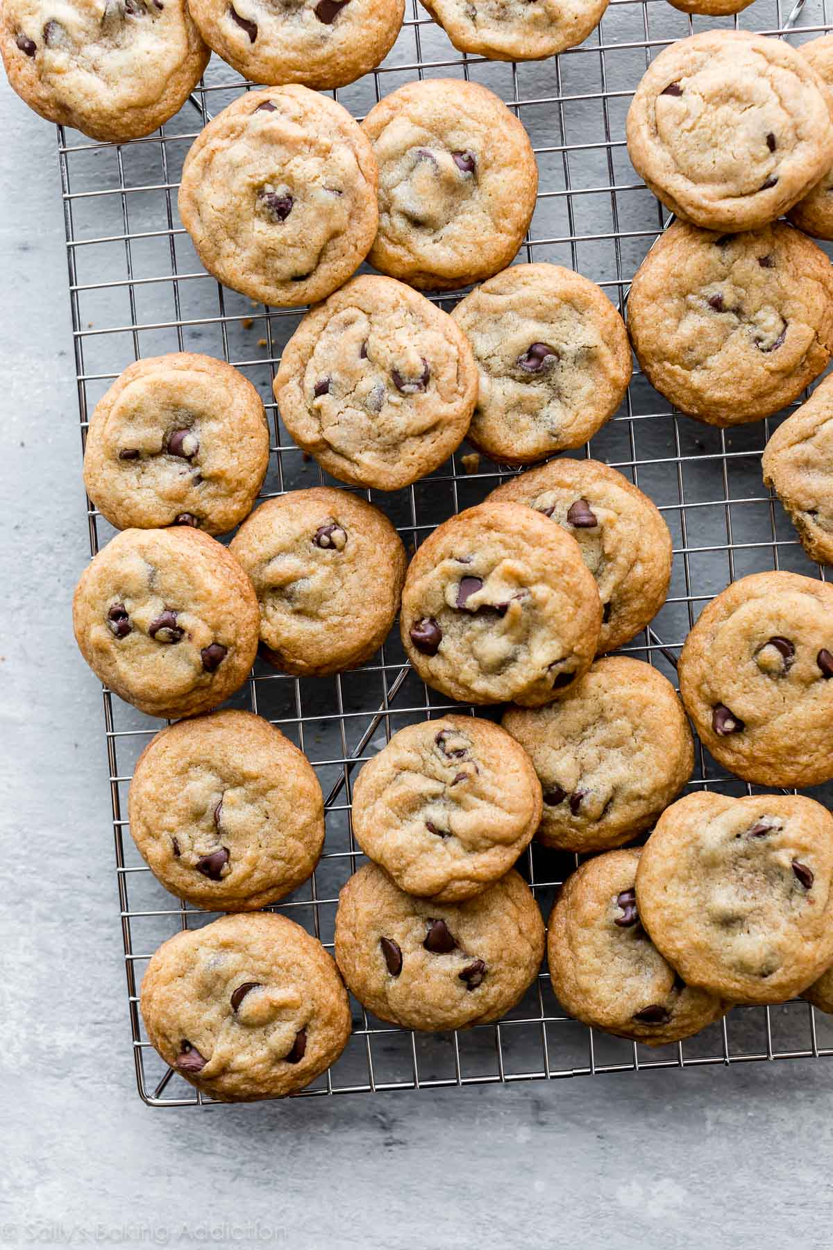 The Perfect Chocolate Chip Cookie Emily