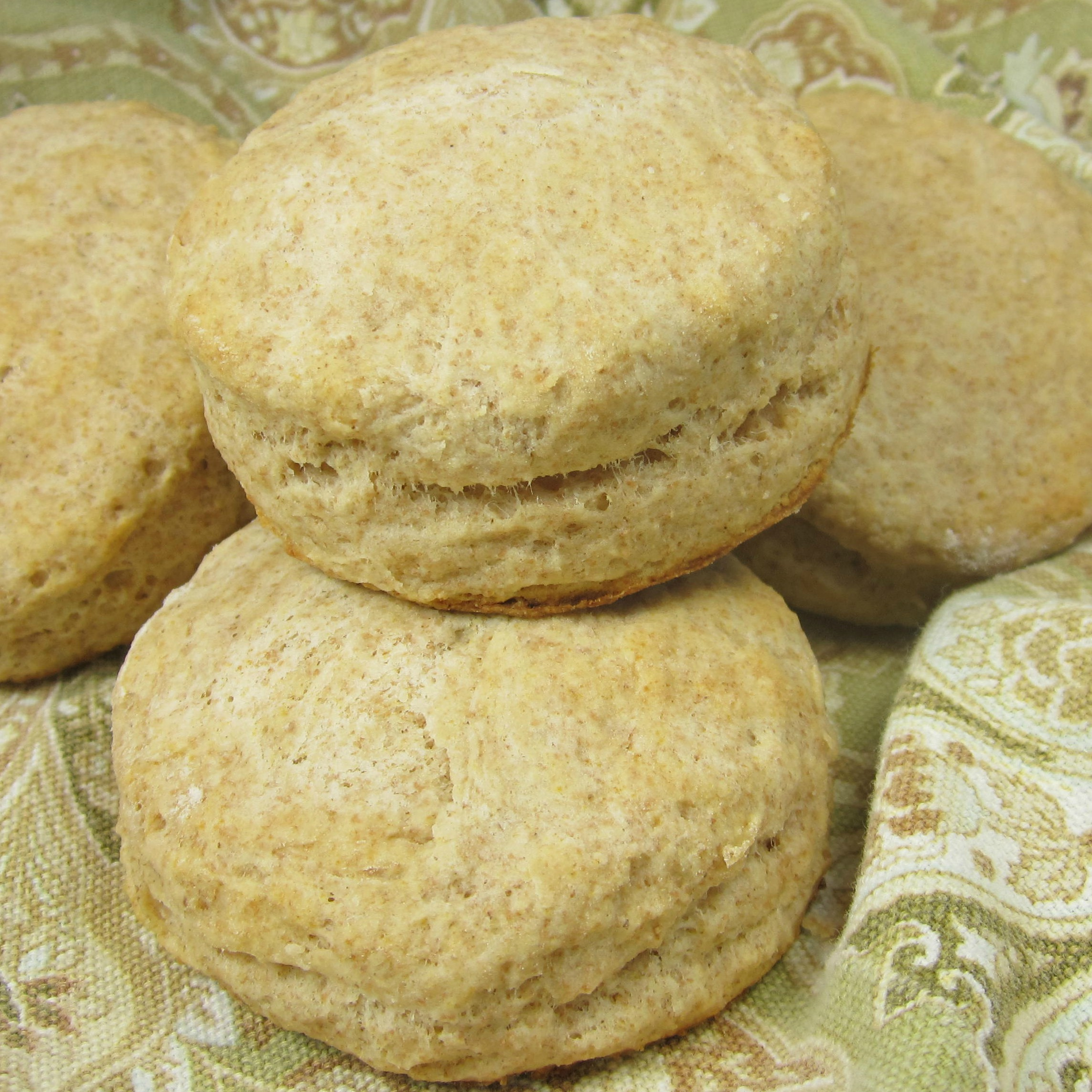 Fluffy Whole Wheat Biscuits Deb C
