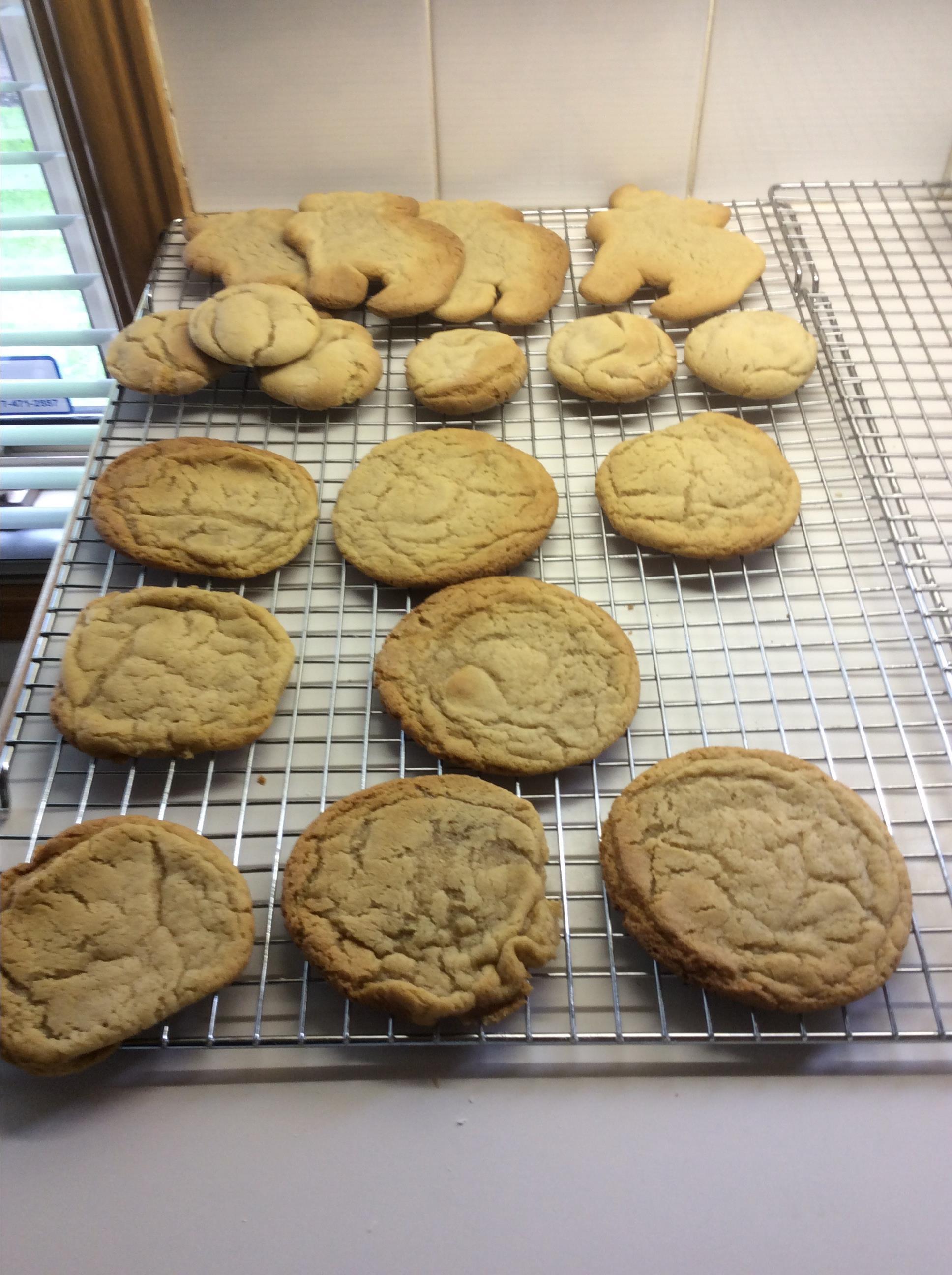 German Cut-Out Cookies biancavenditti