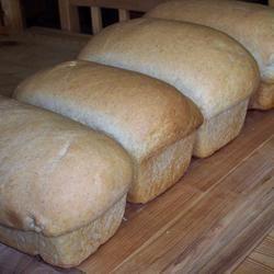 Easy Whole Wheat Bread Sarah-May