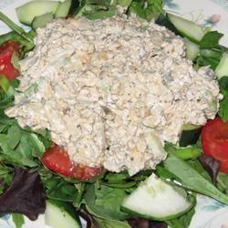 Tempeh Mock Tuna Salad BikramFan