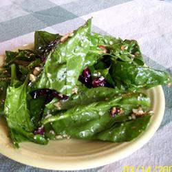 Jamie's Cranberry Spinach Salad mommymeggy
