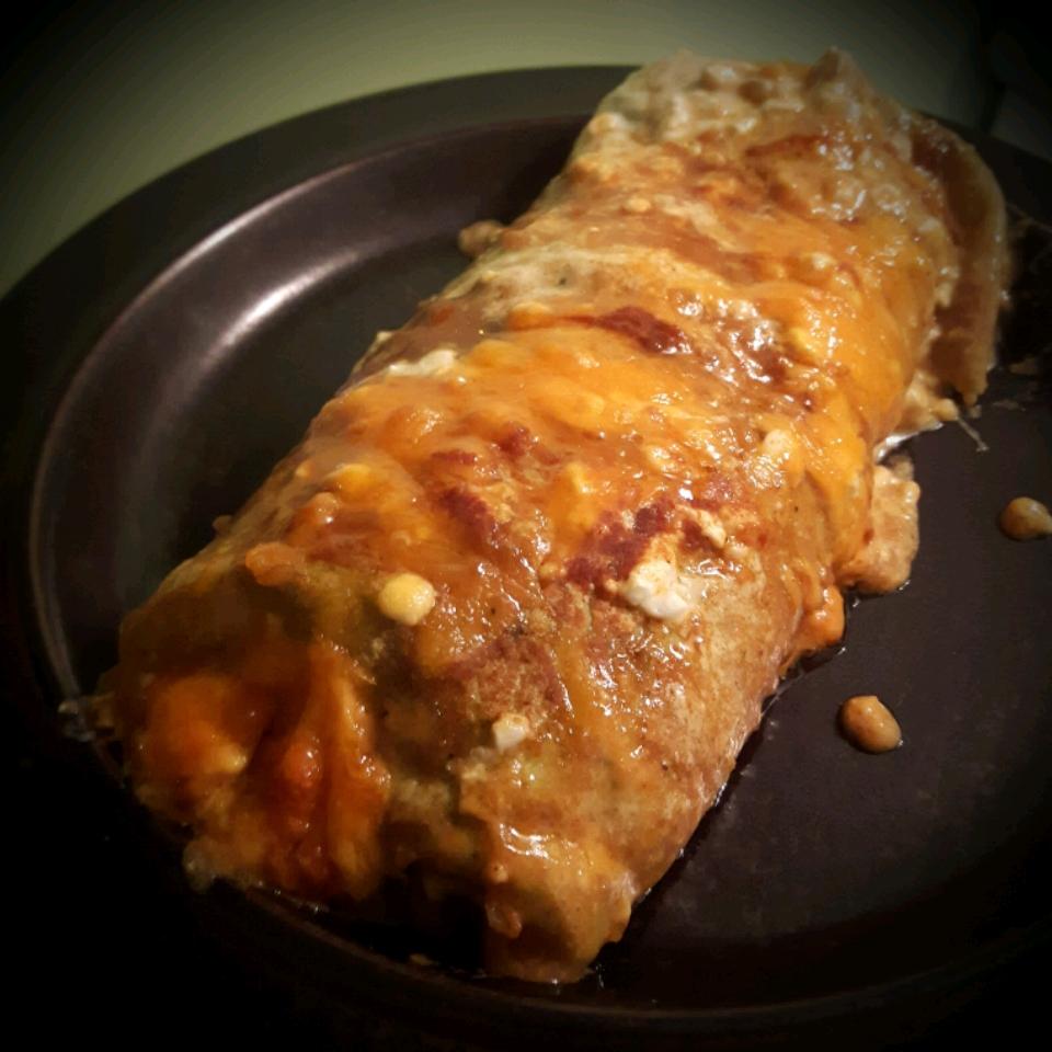 Cottage Cheese Chicken Enchiladas Maevyn